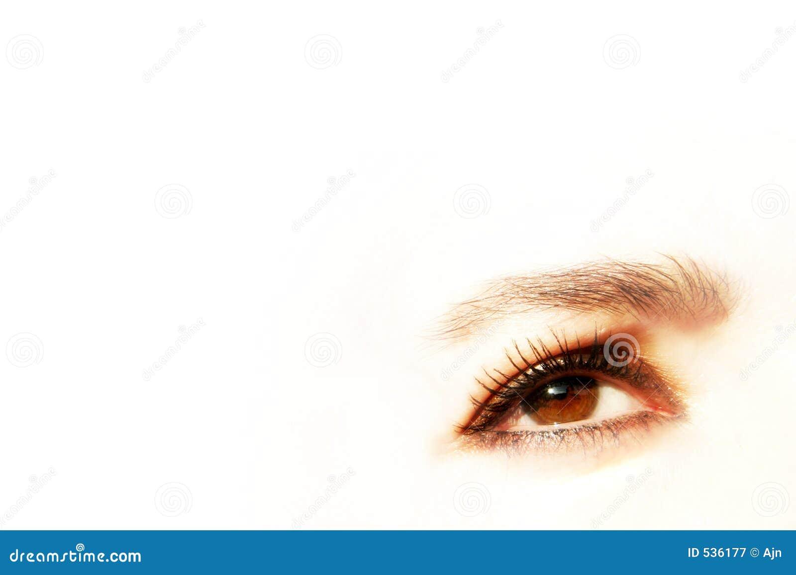 Download 迷人的眼睛 库存图片. 图片 包括有 browne, 女性, 查找, 魅力, 夫人, 虹膜, 妇女, 空白, 亮光 - 536177