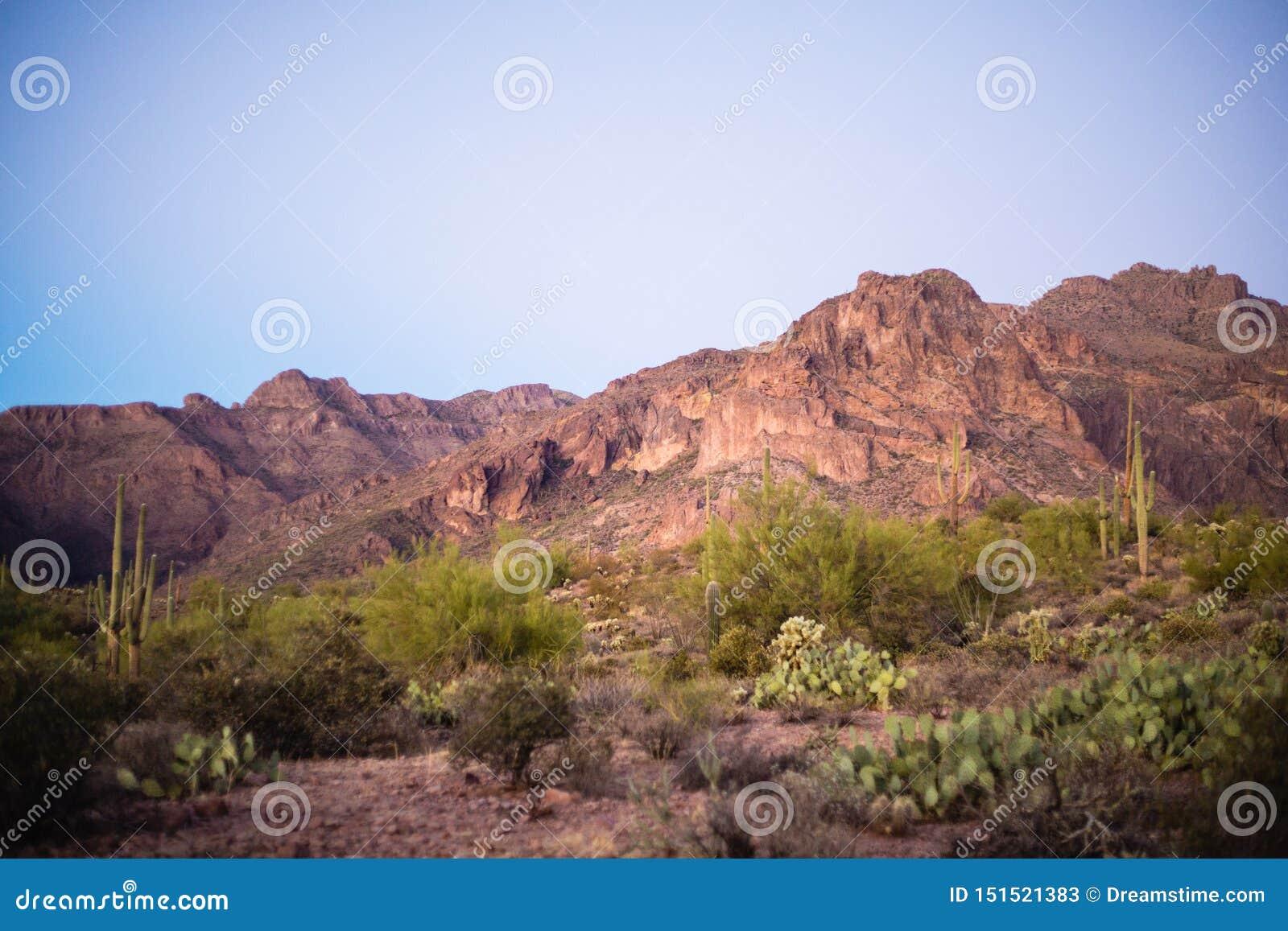 迷信山风景在亚利桑那沙漠