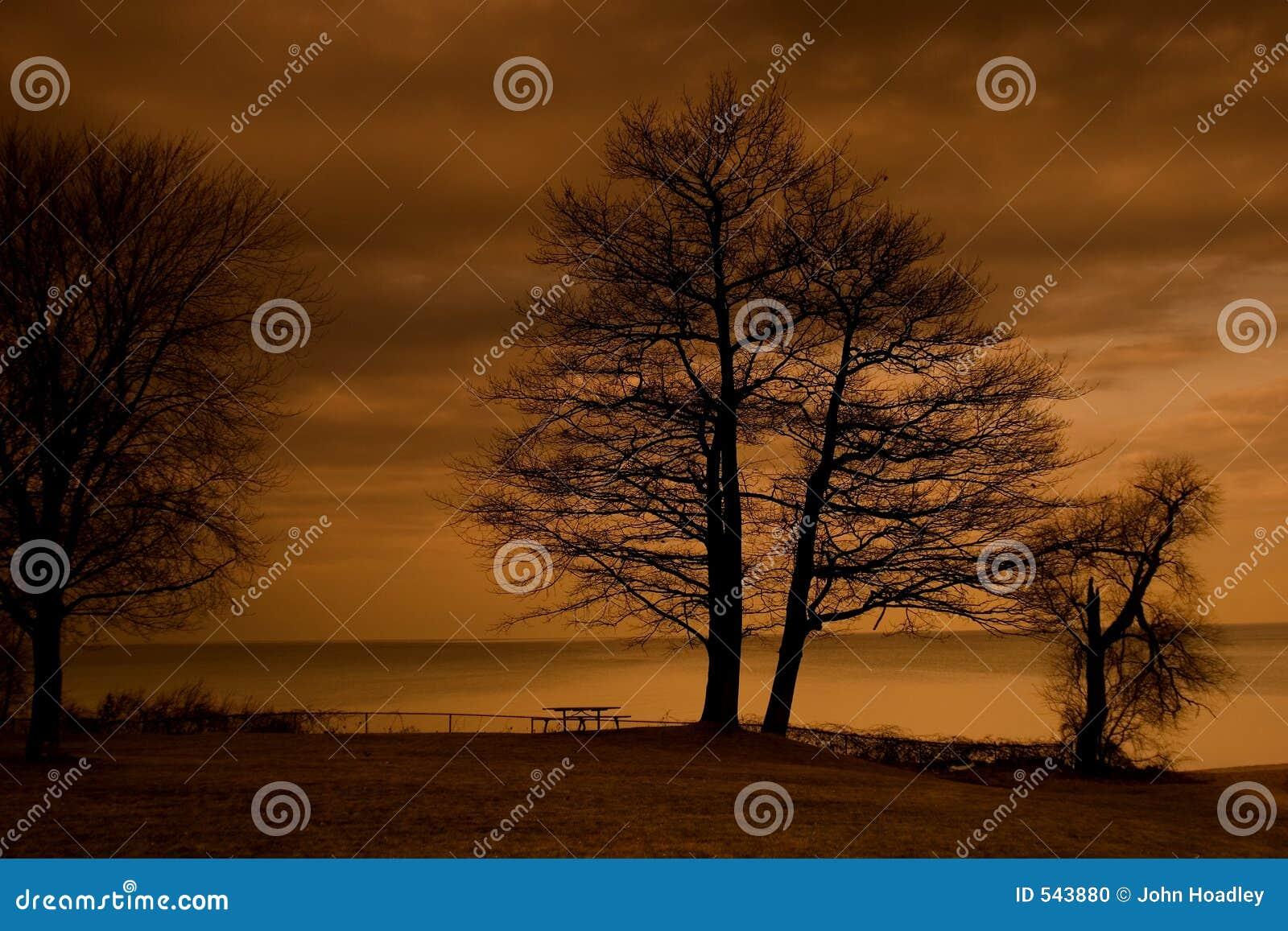 Download 退色的红色天空 库存照片. 图片 包括有 海洋, 红色, 天空, 野餐, 结构树, 海运, 日落, 橡木, 范围 - 543880