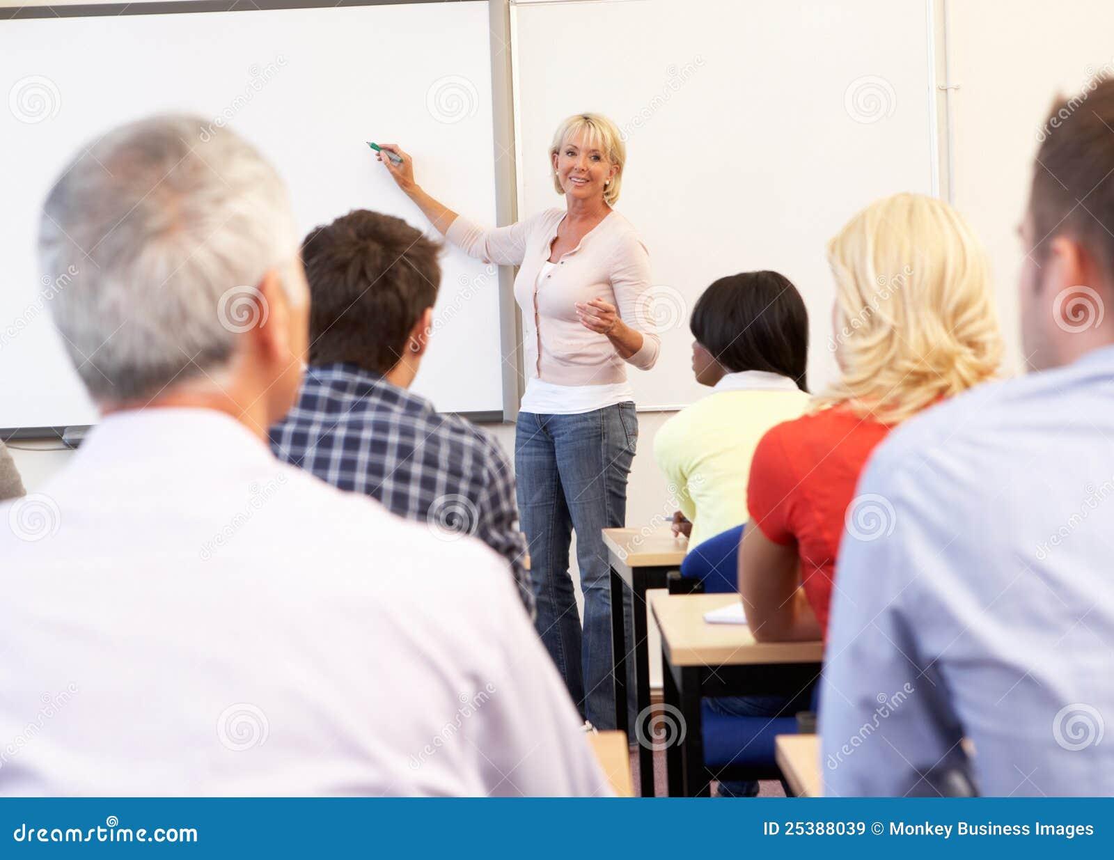 选件类高级教的家庭教师