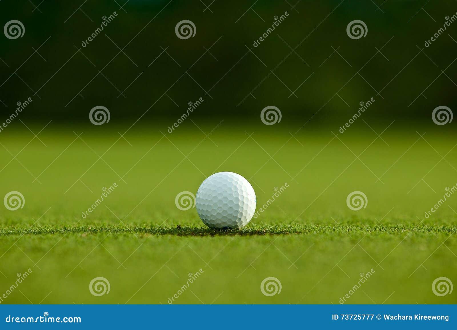 选择聚焦 在孔附近的白色高尔夫球在绿草好f