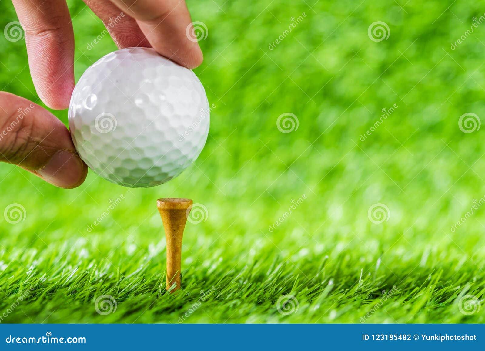 递举行在发球区域与绿草backg的褐色木头上把放的高尔夫球