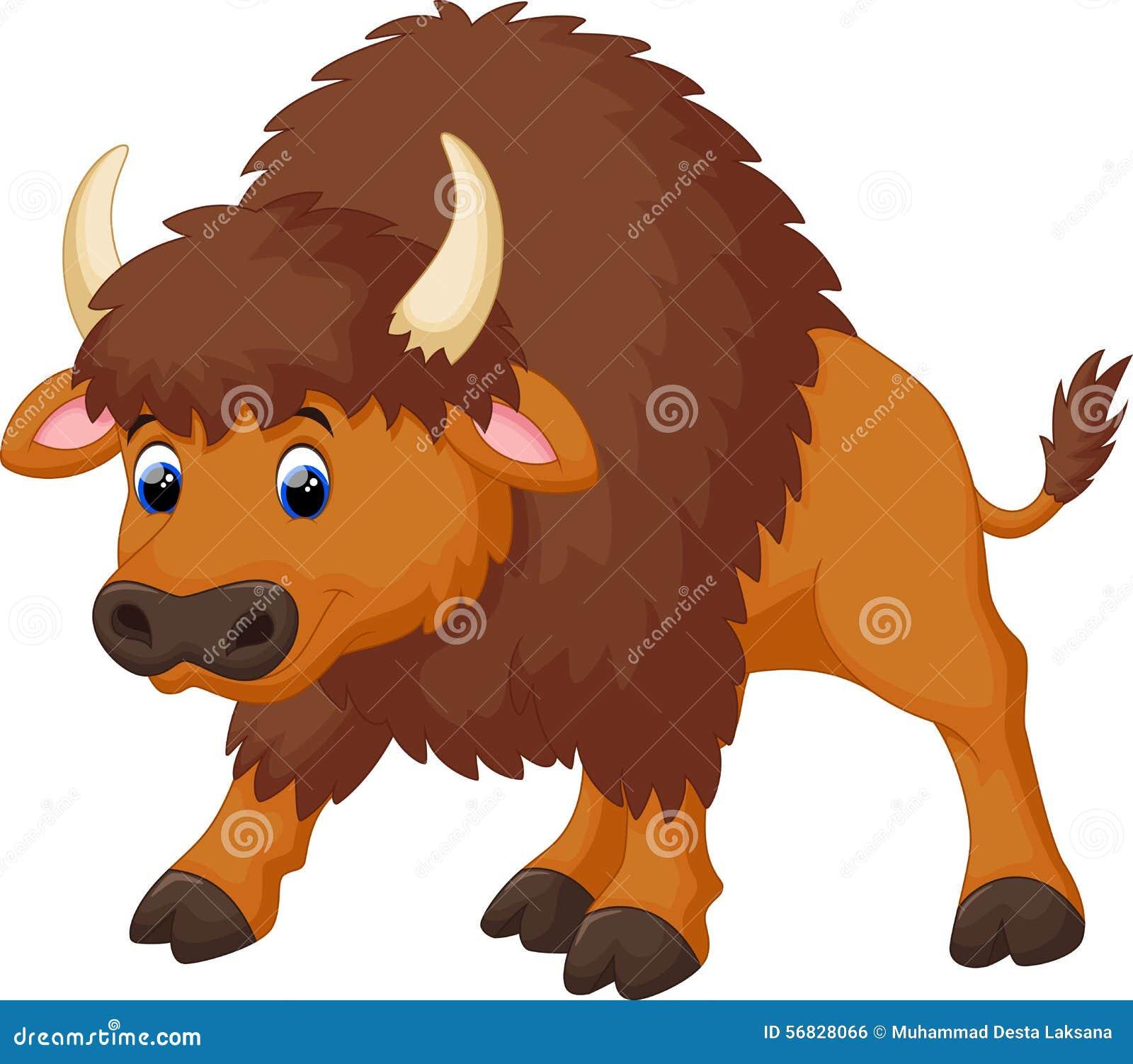 逗人喜爱的北美野牛动画片