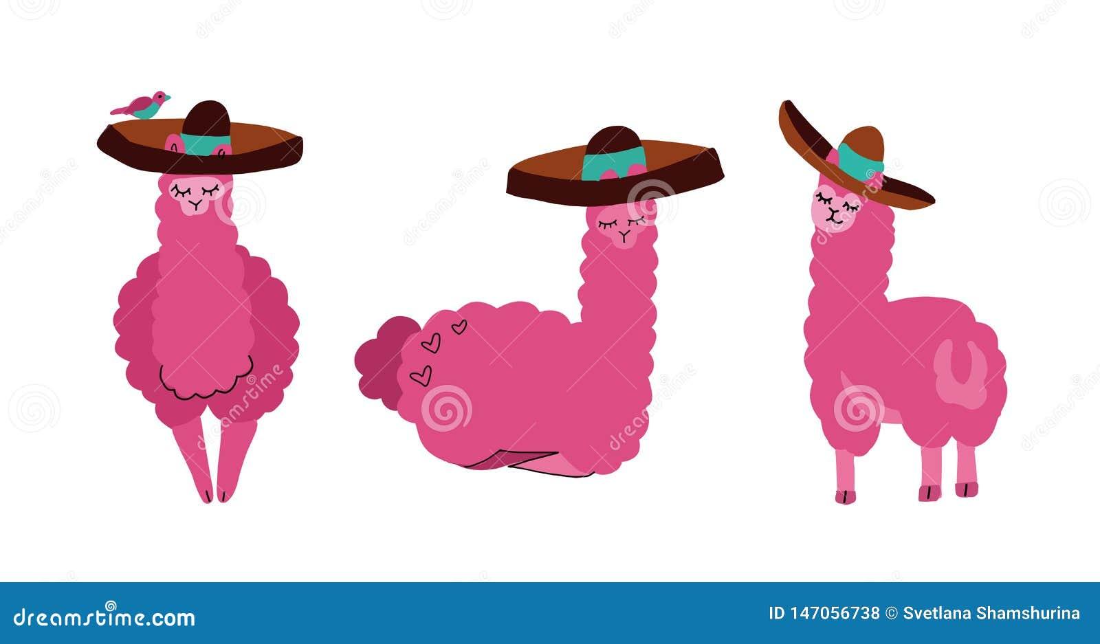 逗人喜爱的在阔边帽设置的骆马和羊魄 在白色背景隔绝的滑稽的微笑的动物 手拉的骆马字符