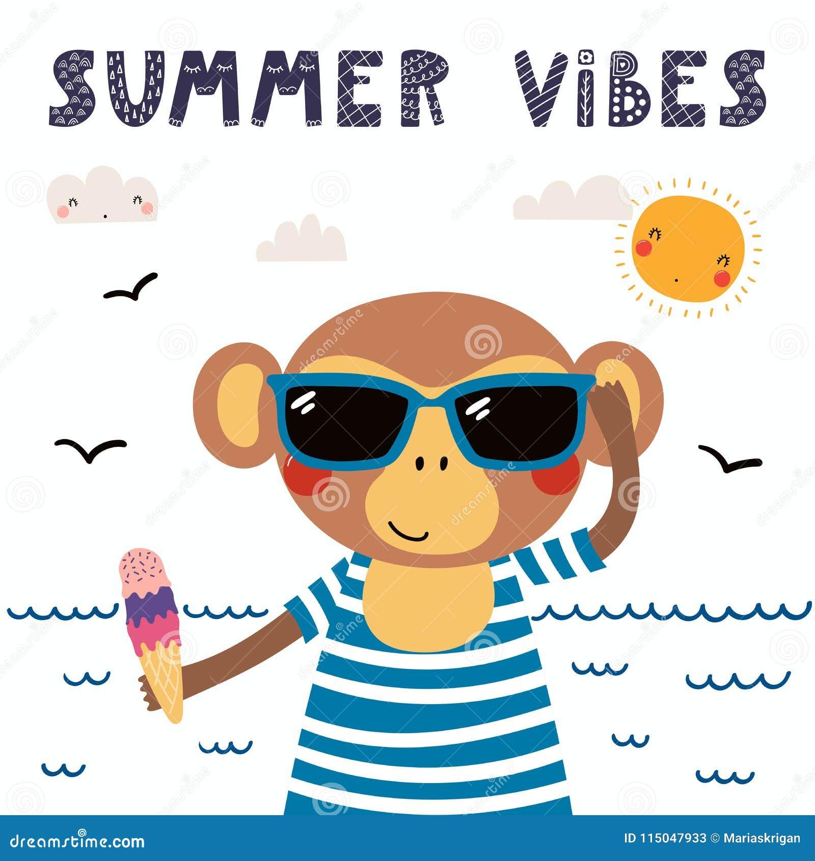 逗人喜爱的夏天猴子
