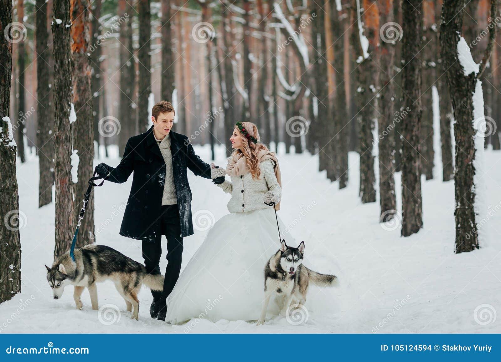 逗人喜爱的夫妇在足迹走在有两条西伯利亚狗的多雪的森林里 户外婚姻冬天的新娘新郎 附庸风雅