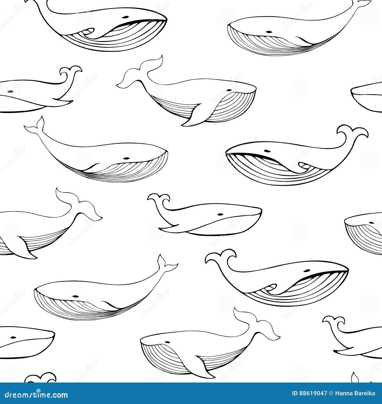 逗人喜爱的手拉的鲸鱼 单色传染媒介无缝的样式
