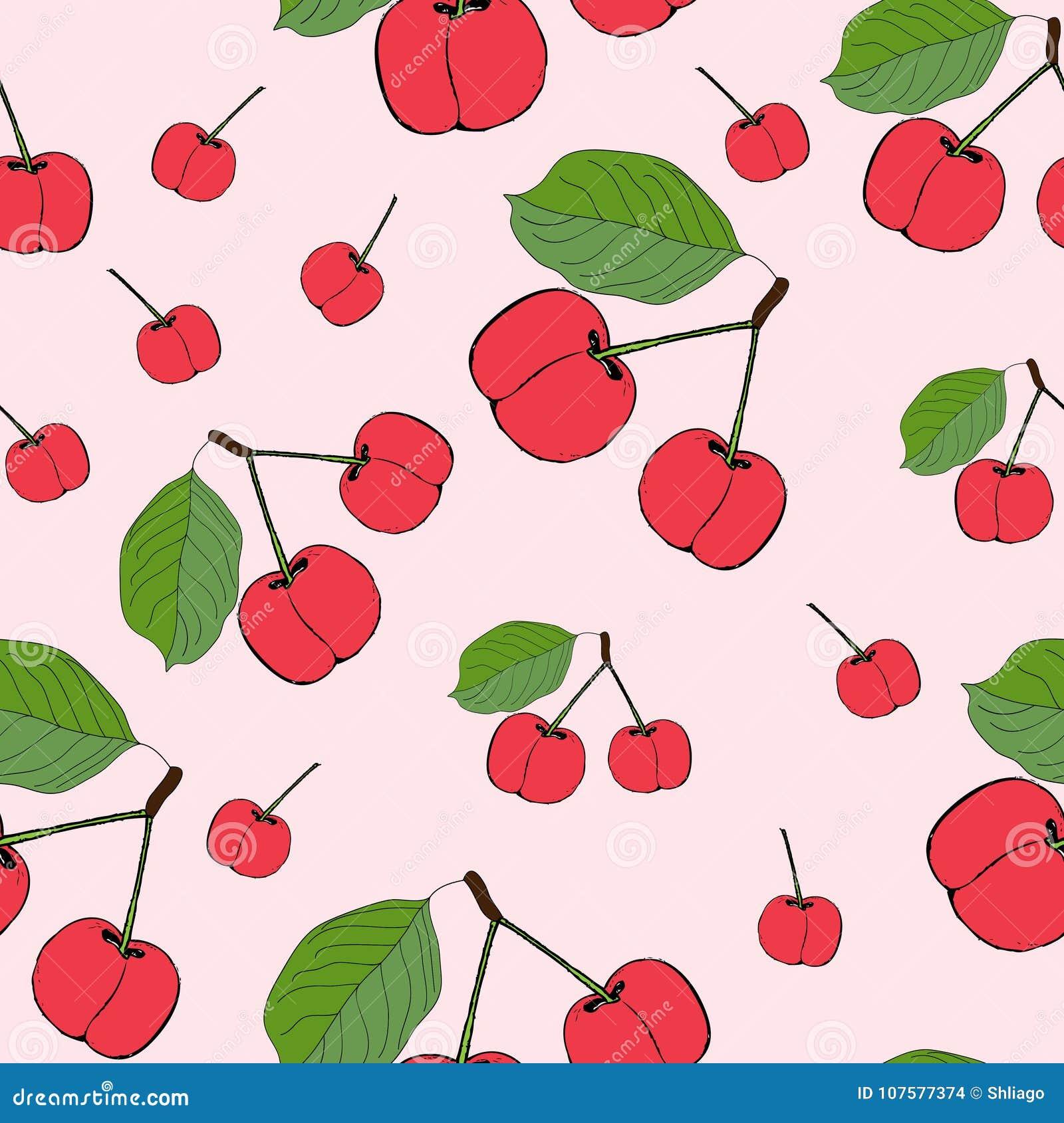 逗人喜爱的樱桃无缝的样式 有益于纺织品,包裹,墙纸等等 在桃红色隔绝的甜红色成熟樱桃