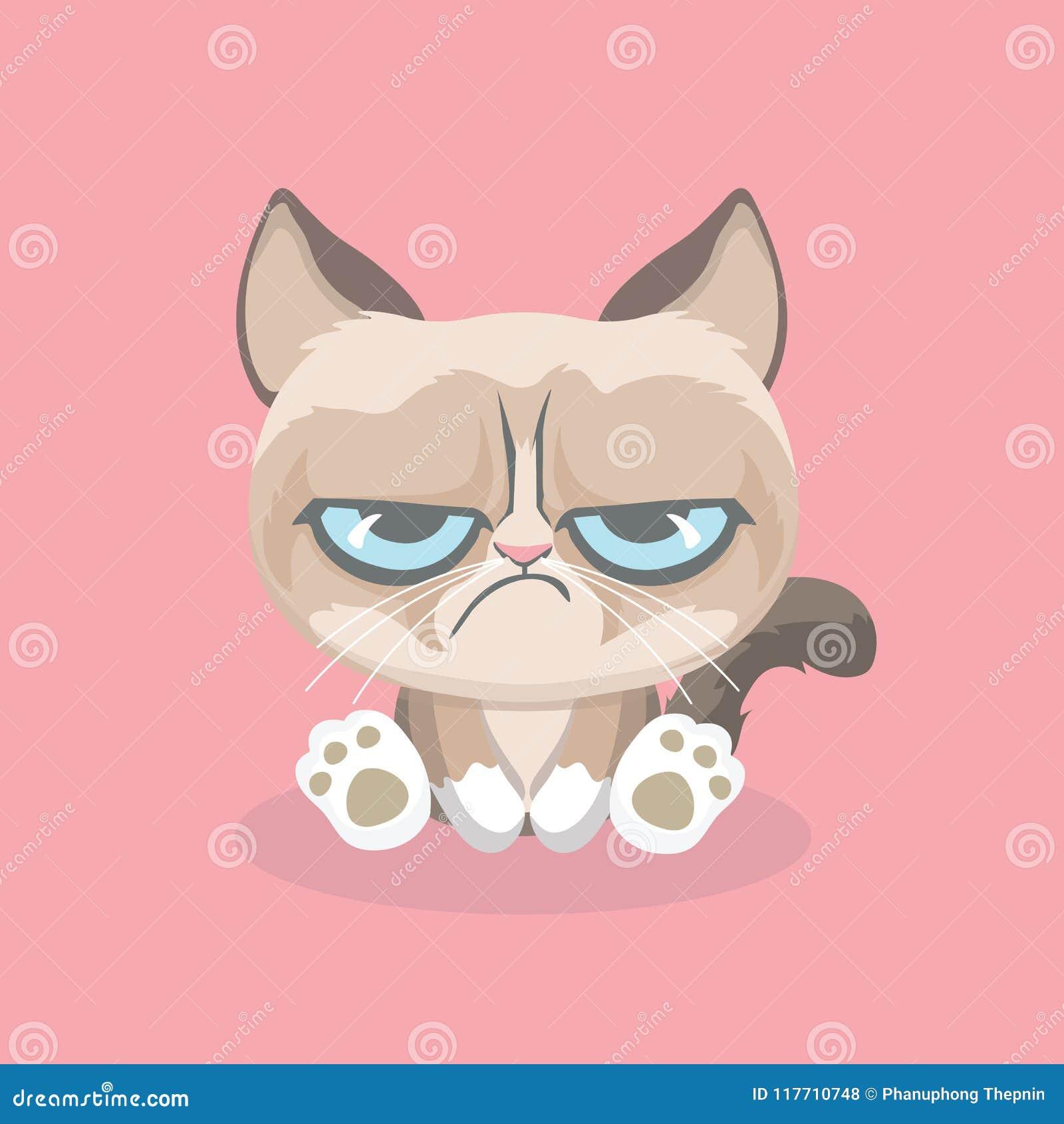 逗人喜爱的脾气坏的猫