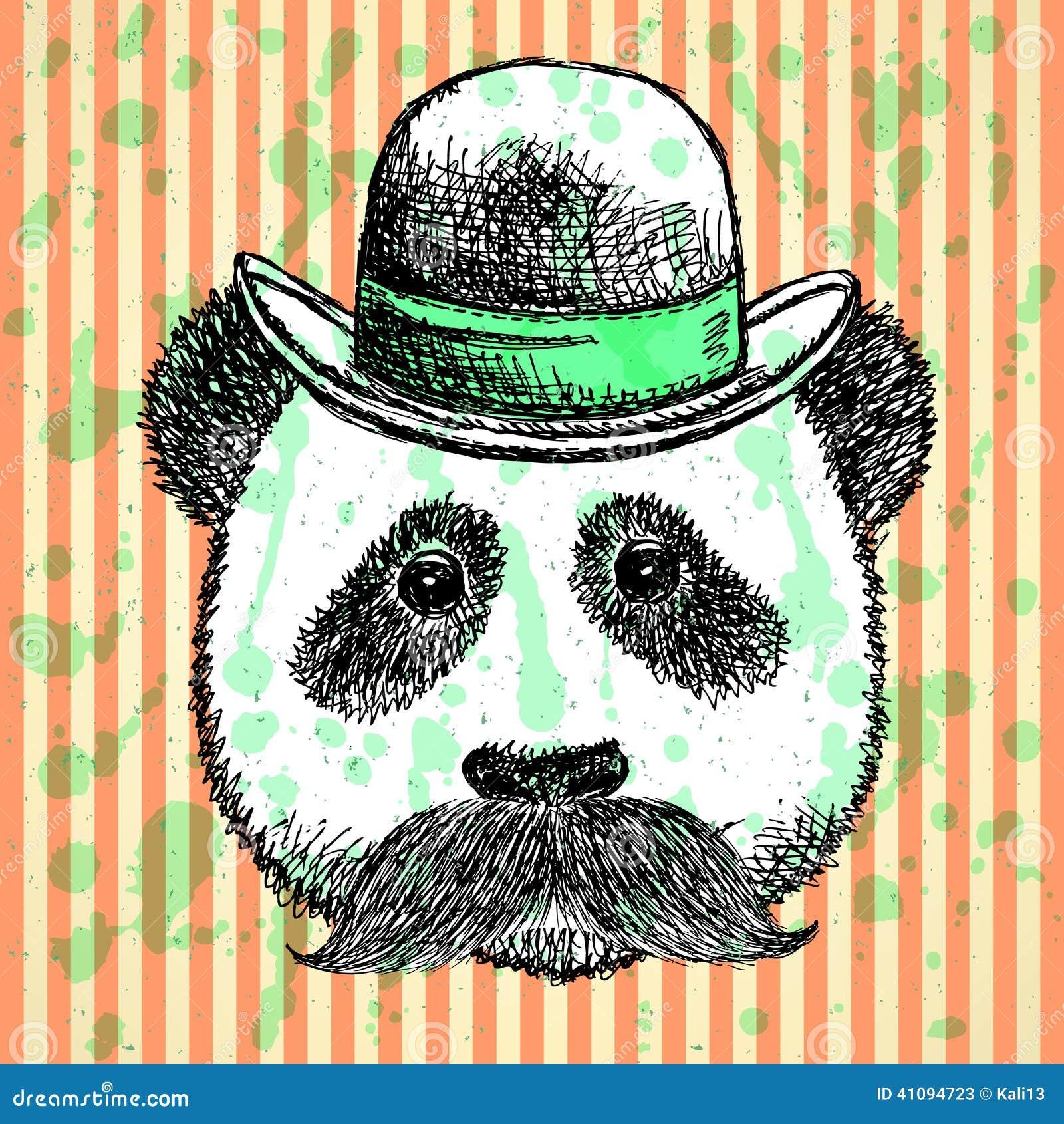 速写熊猫在有髭的,传染媒介背景帽子图片