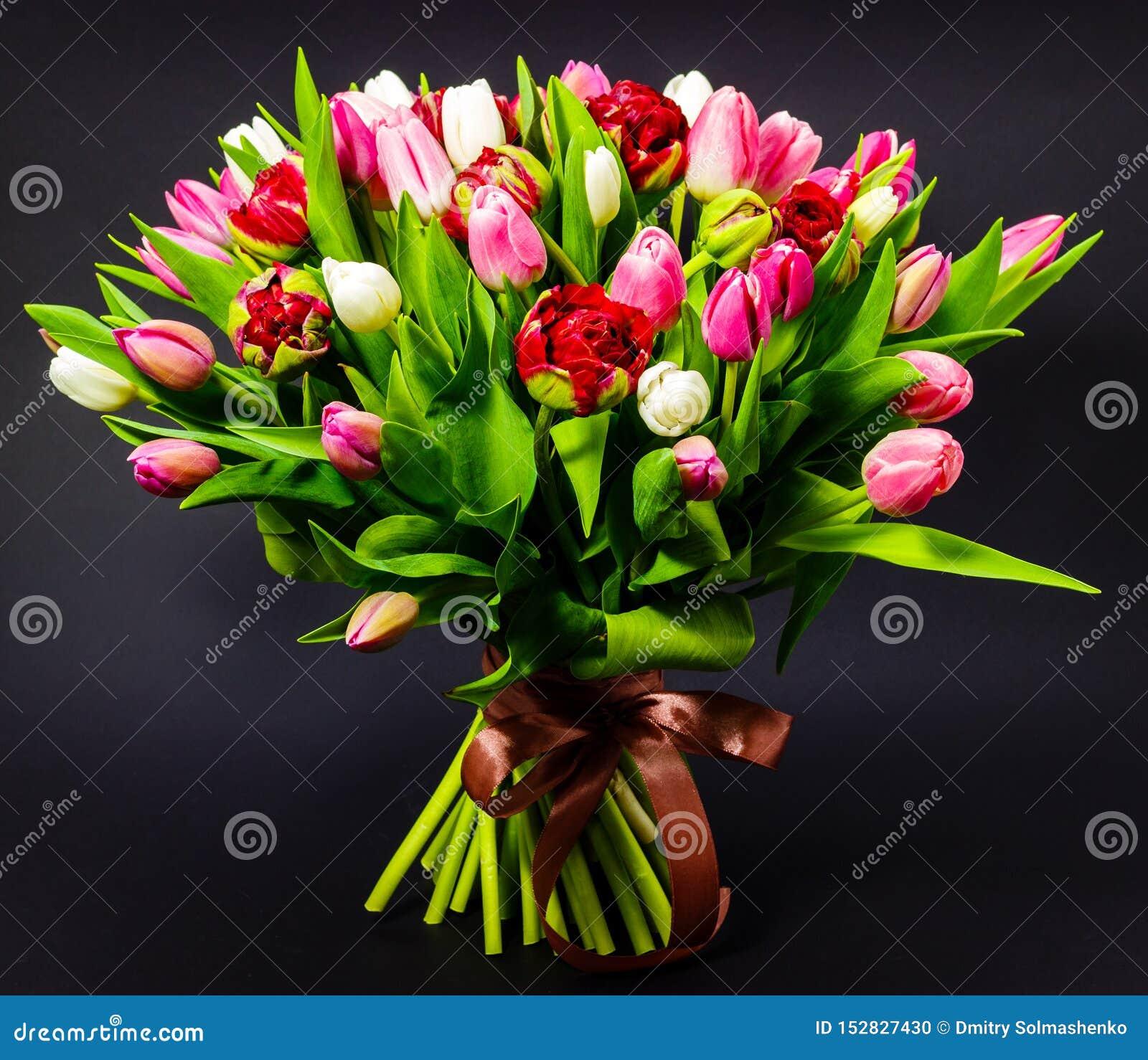 郁金香明亮的花束在黑暗的背景的有花卉背景