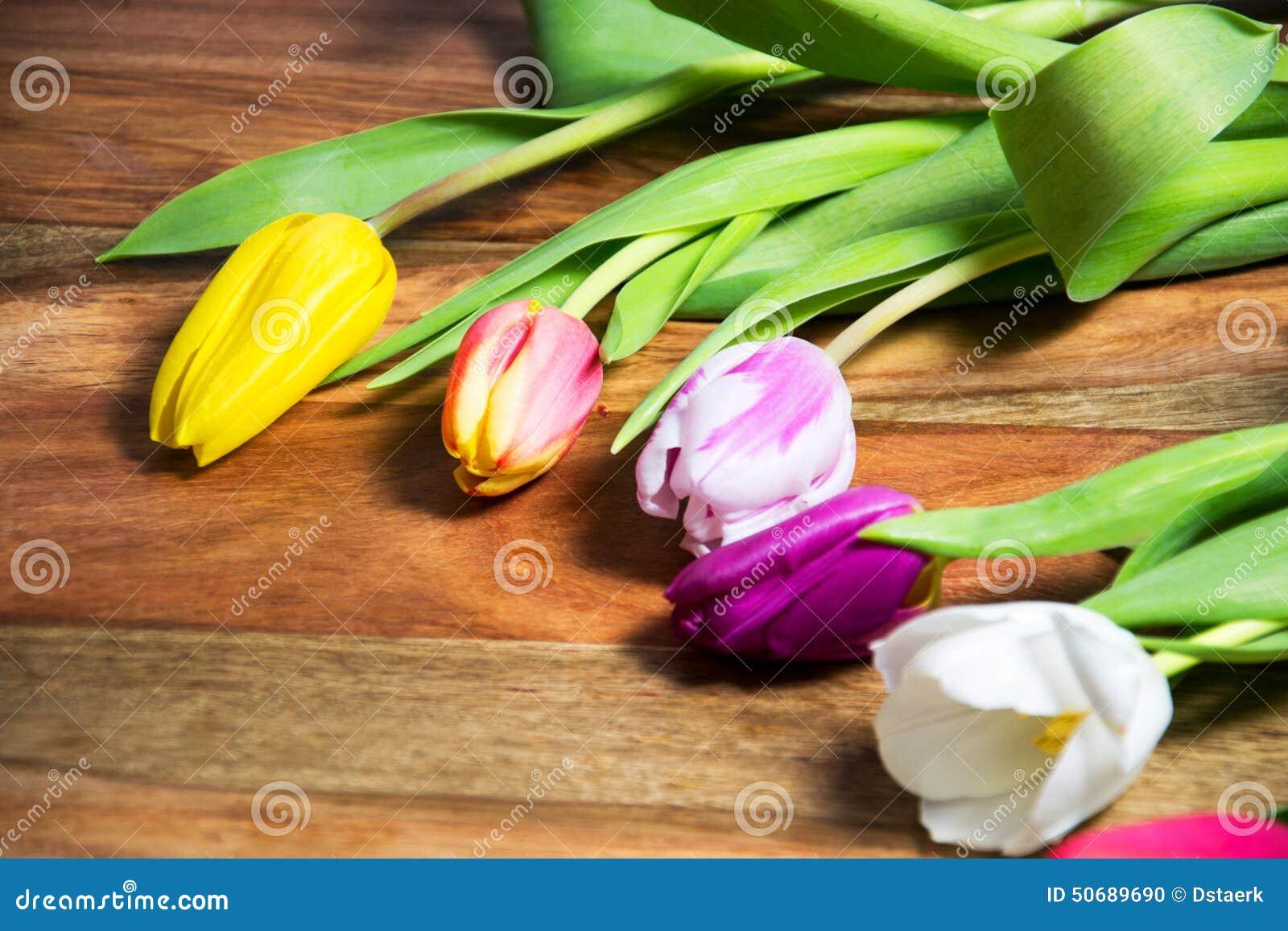 Download 郁金香 库存照片. 图片 包括有 季节性, 开花, 生日, 木头, 花卉, beauvoir, 季节, 春天 - 50689690