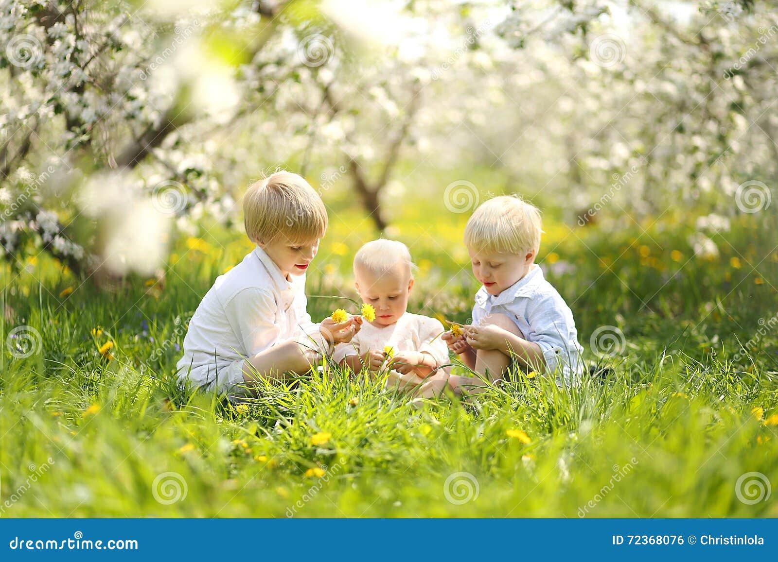 采摘花的三个愉快的小孩在草甸