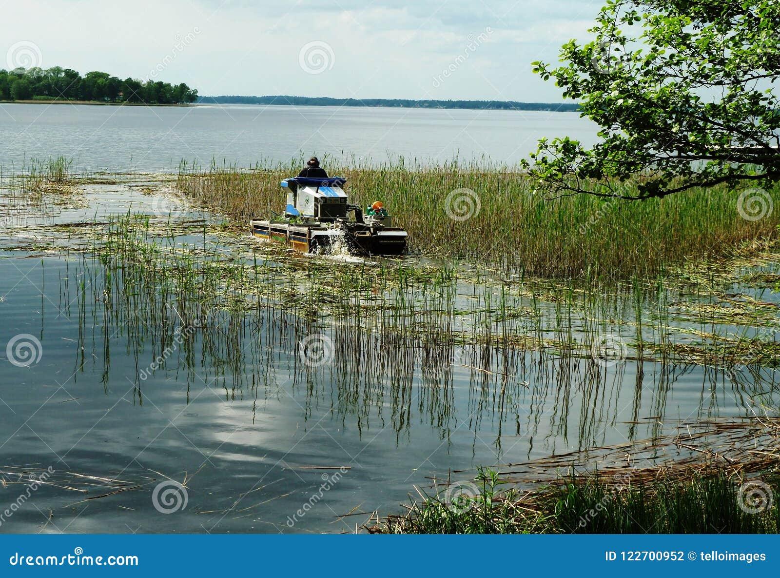 里德在湖的切割机