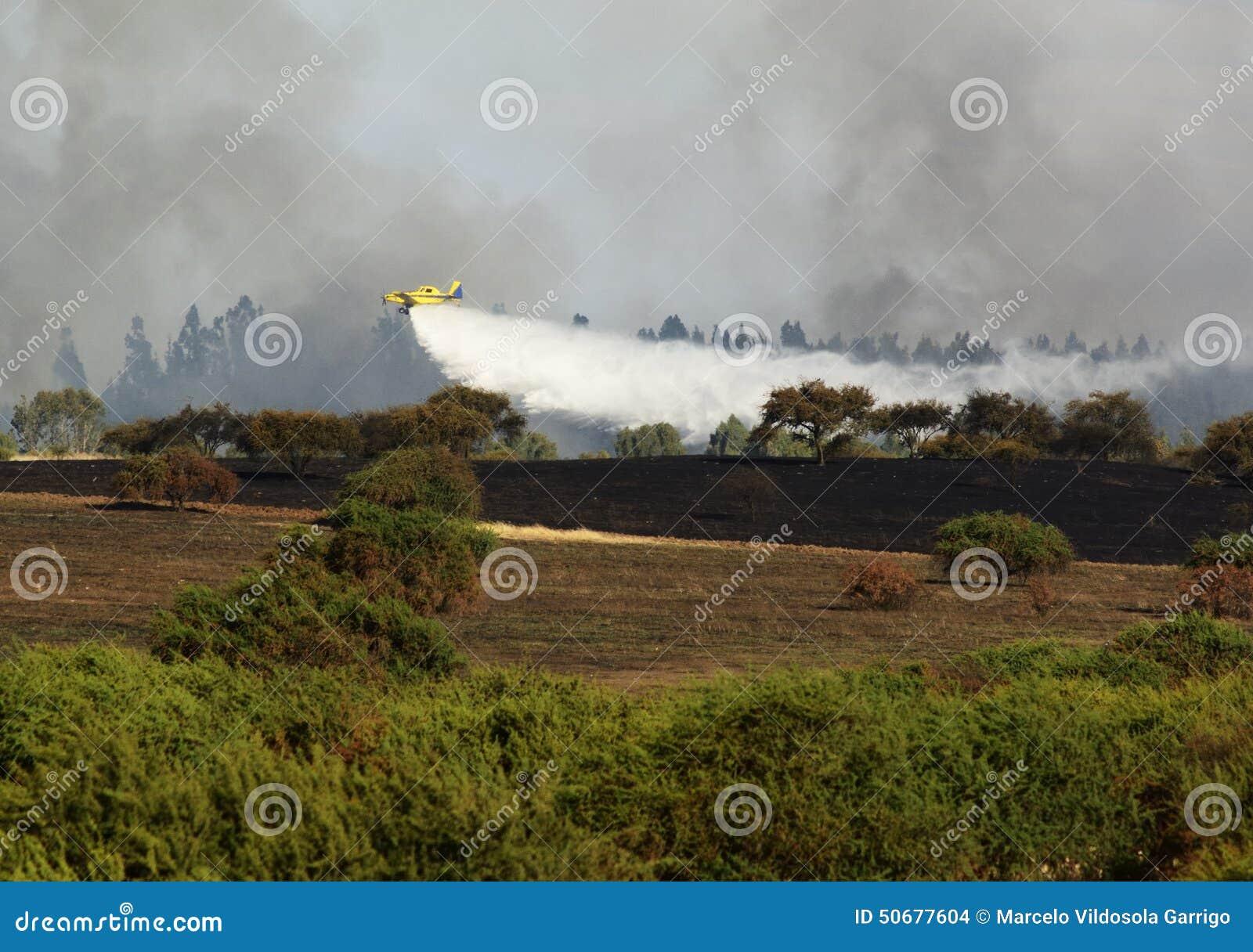 Download 野火 库存照片. 图片 包括有 运输, 坦克, alameda, 灾害, 结构树, 森林, 消防队员, 污染 - 50677604