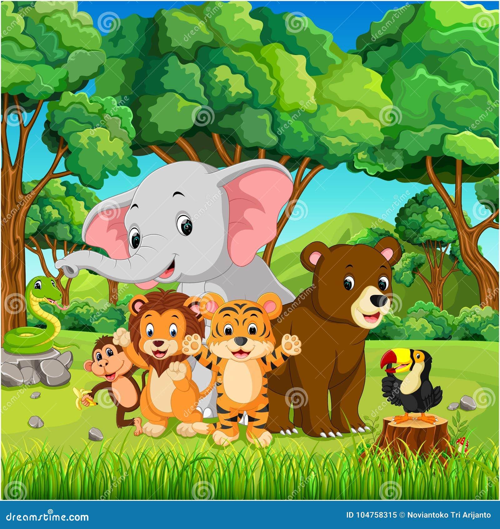 野生动物在森林里