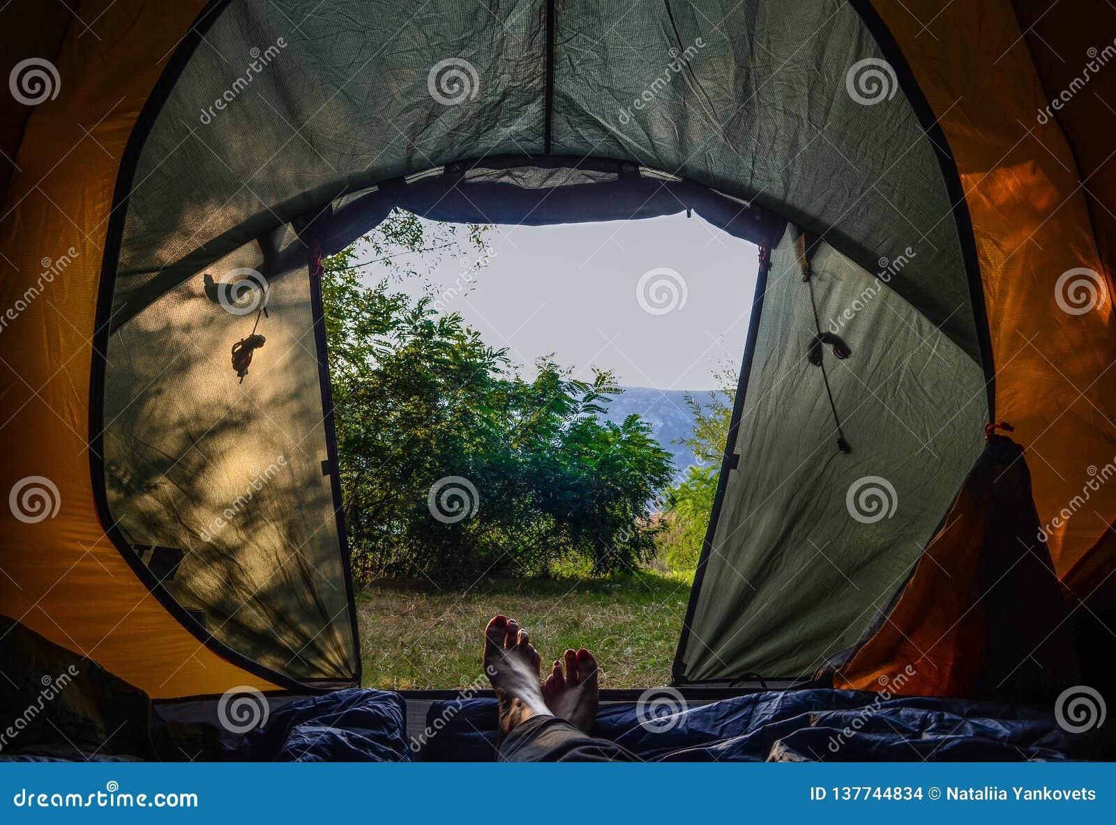 野营 在帐篷的早晨 在一个绿色帐篷的女性腿