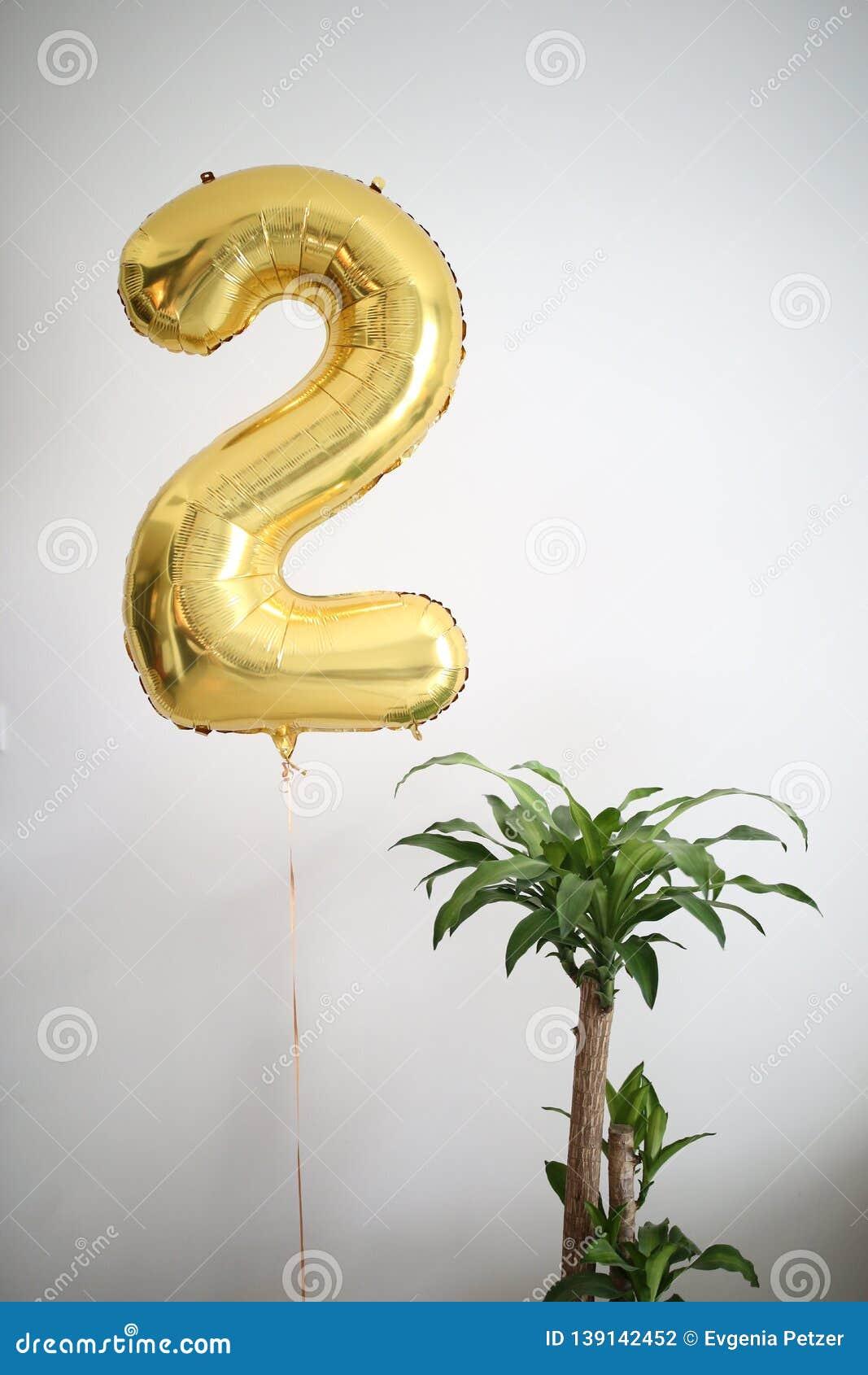 金气球第二和一棵家庭植物,白色家庭内部