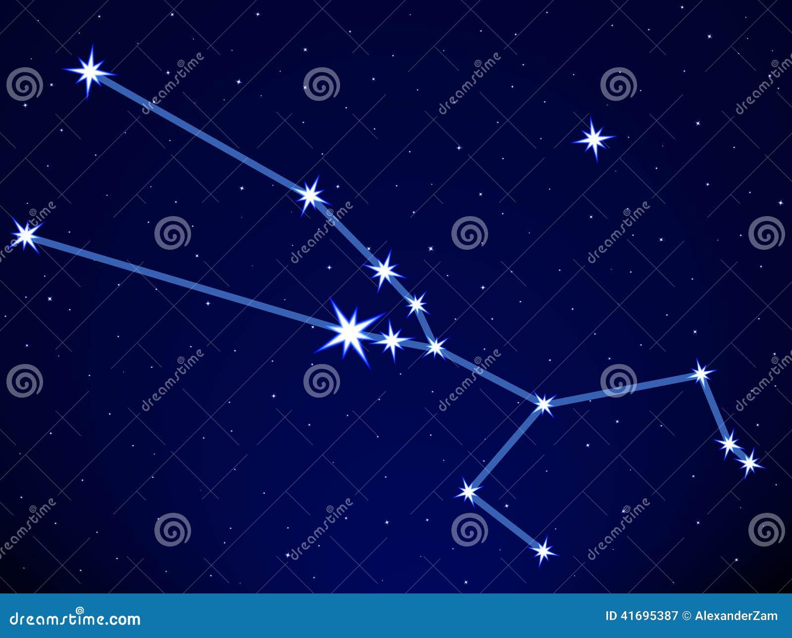 在星座天空的星斗的金牛座满天.摩羯座女生难追么图片