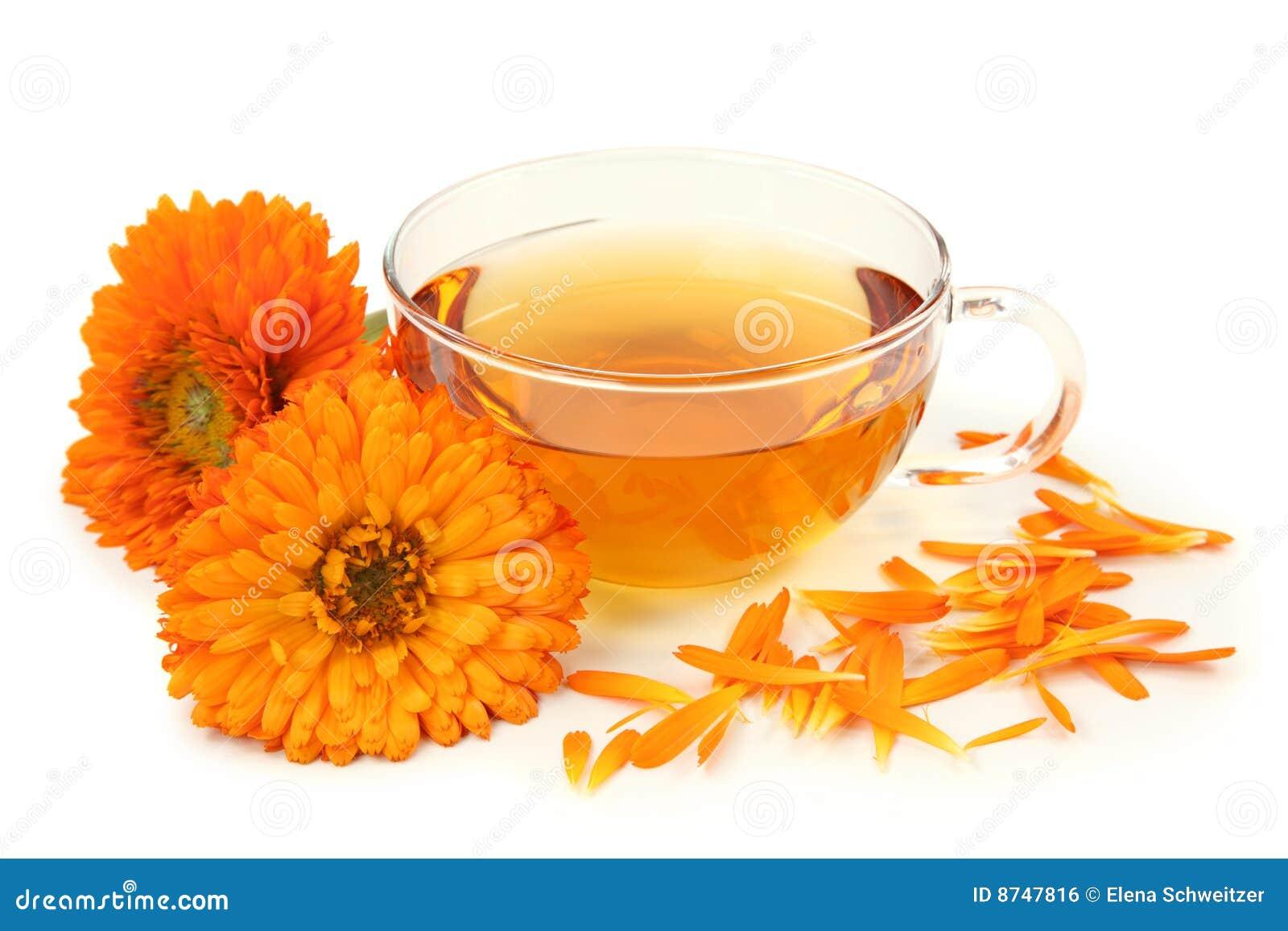 金盏草清凉茶