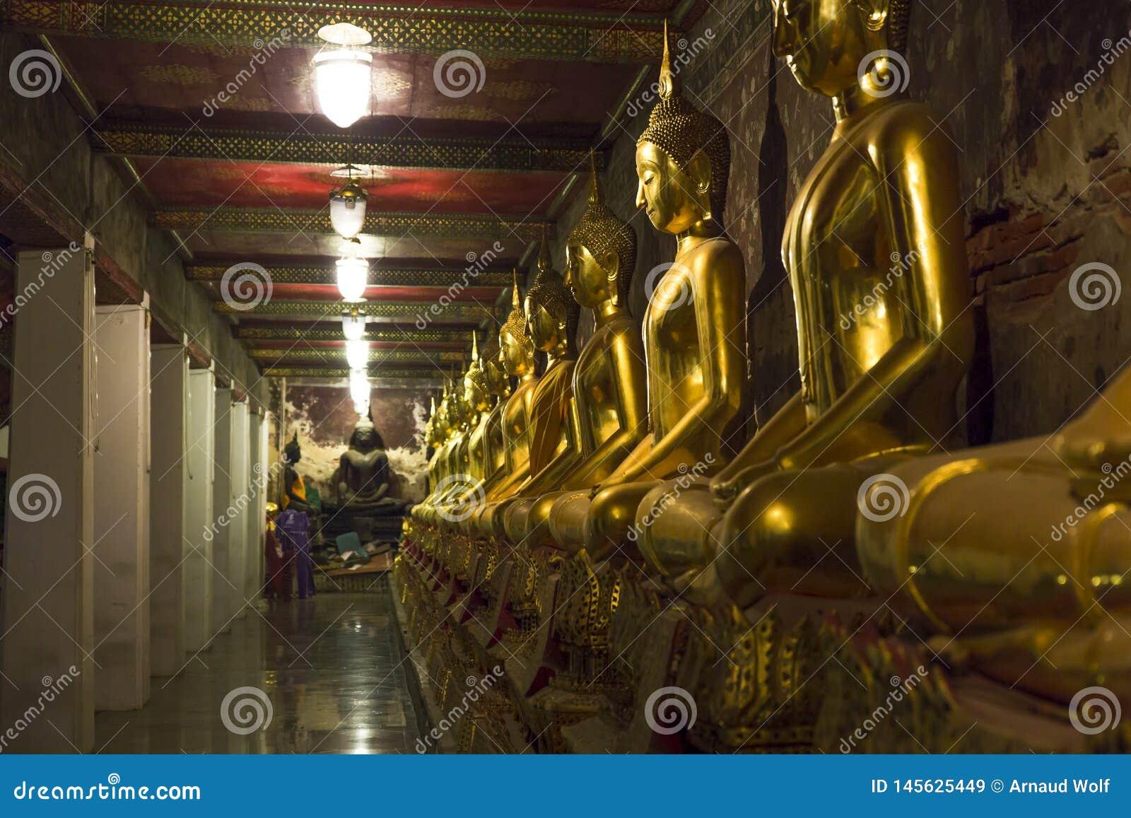 金黄雕象线