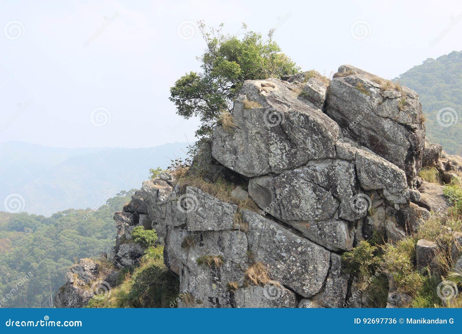 针岩石观点, Gudalur, Nilgiris, Tamilnadu,哥印拜陀