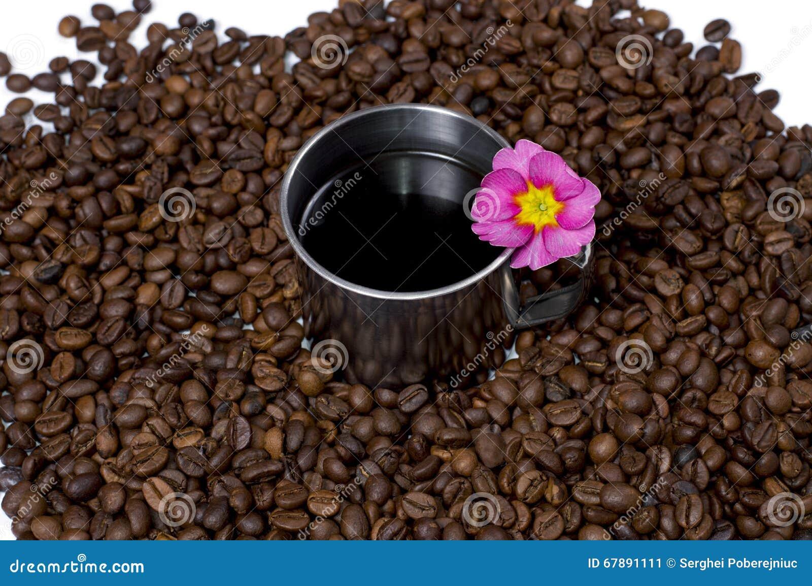 钢咖啡在咖啡粒和花的