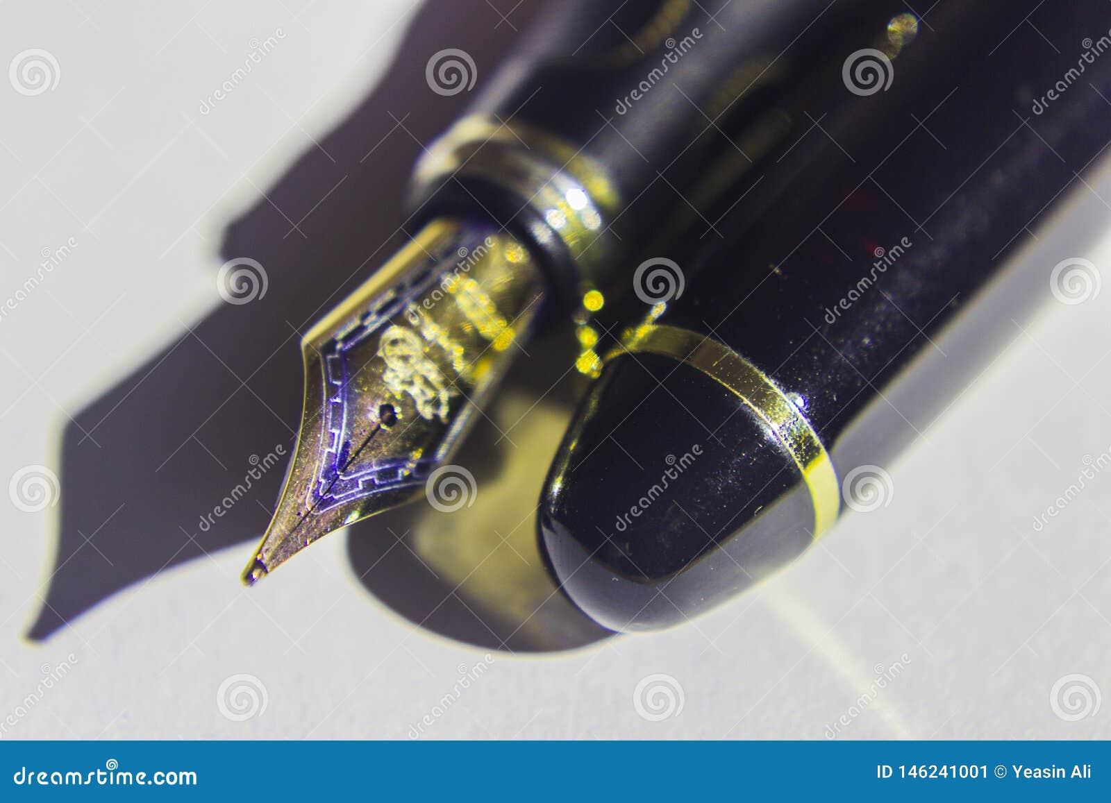 钢笔和鸟嘴