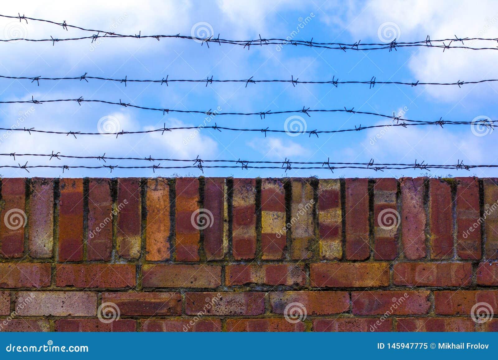 铁丝网和砖wallagainst天空蔚蓝 天空蔚蓝用铁丝网盖 监狱和蓝色多云天空