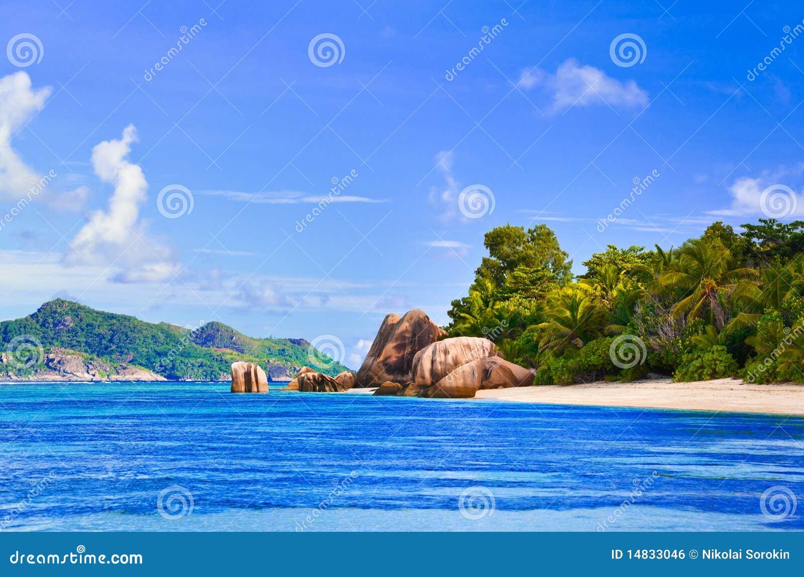 银海滩d塞舌尔群岛来源