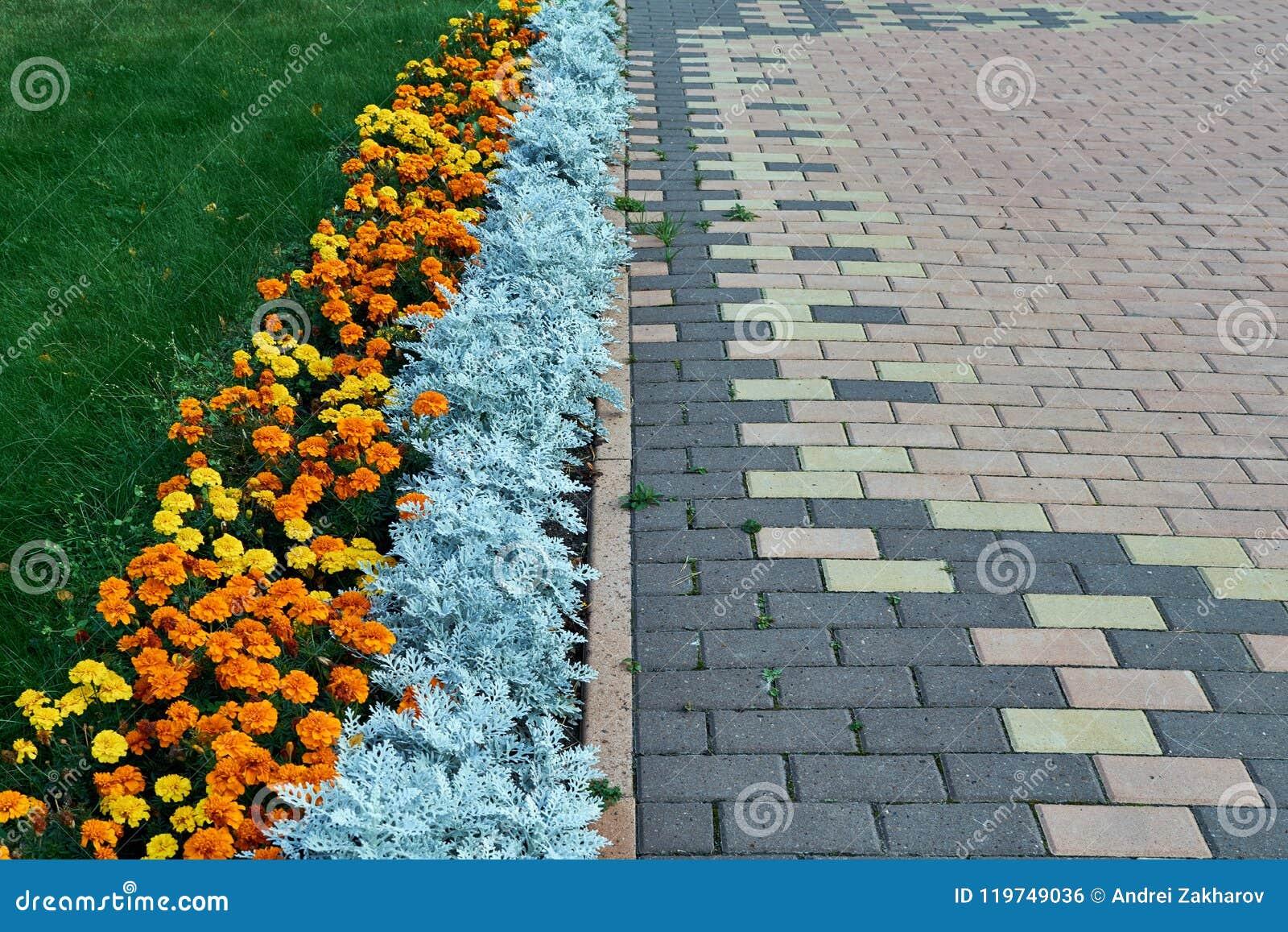铺与长方形形状和棕色颜色的样式