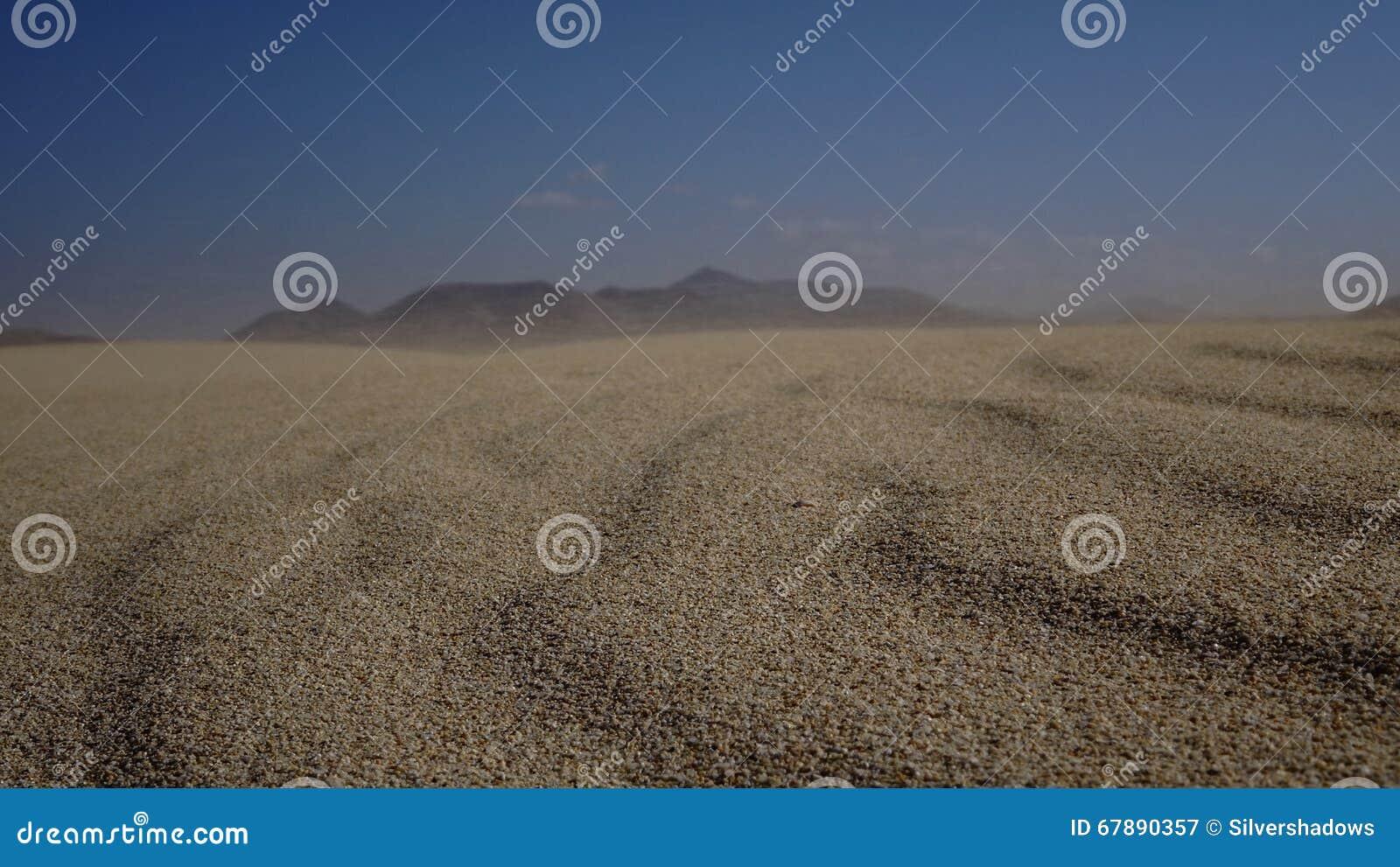 铺沙样式自然公园, Corralejo,金丝雀海岛,西班牙