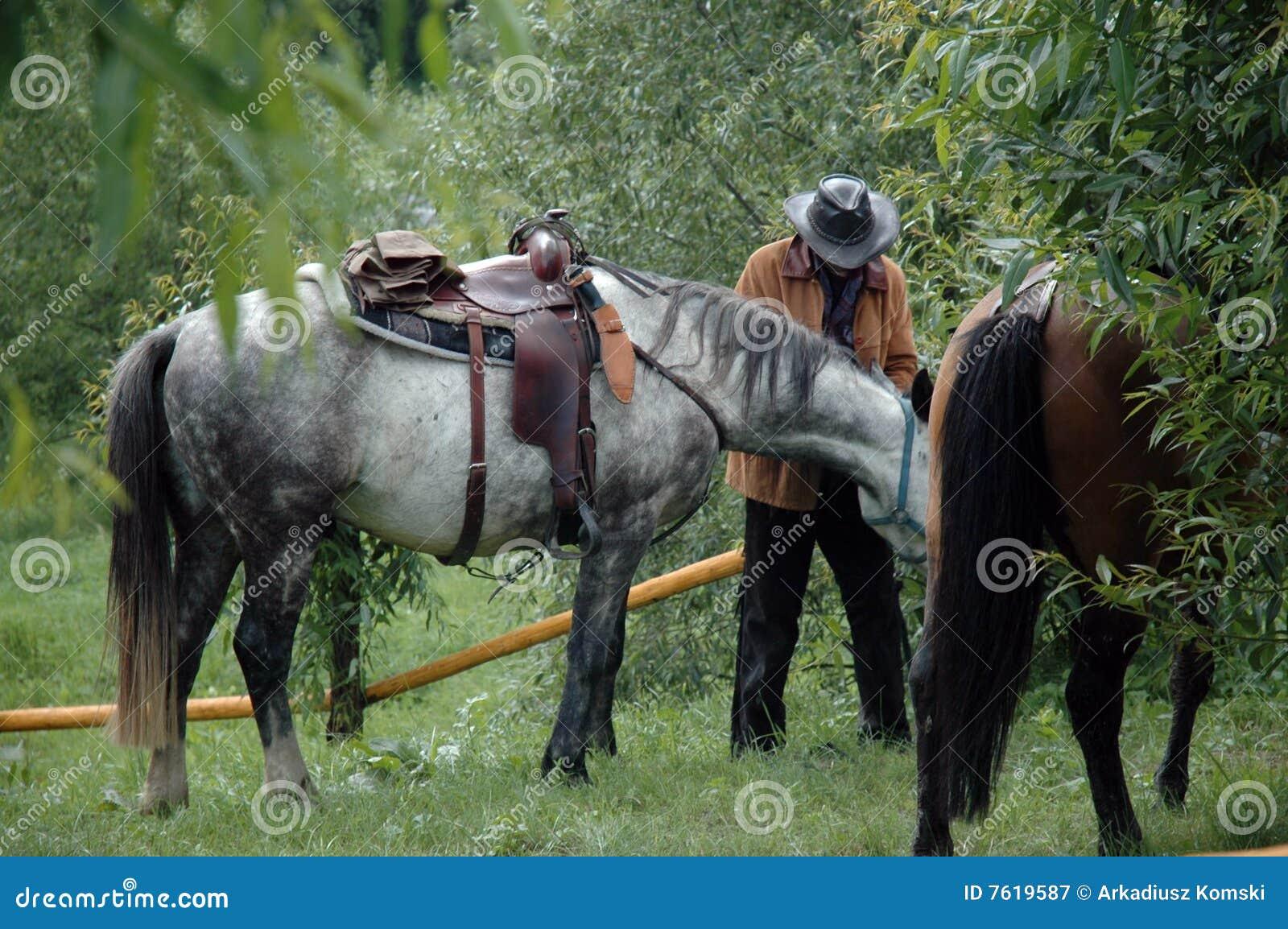 锁定骑马的马