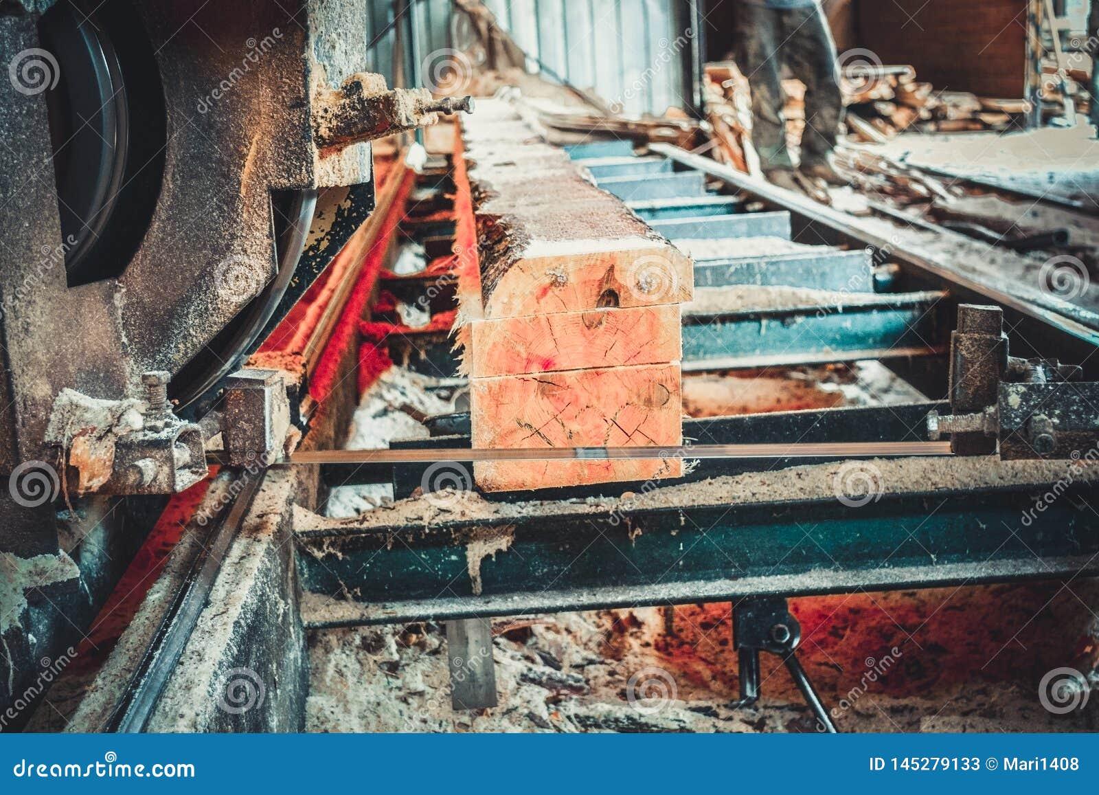 锯木厂 加工的过程注册锯木厂机器锯树干