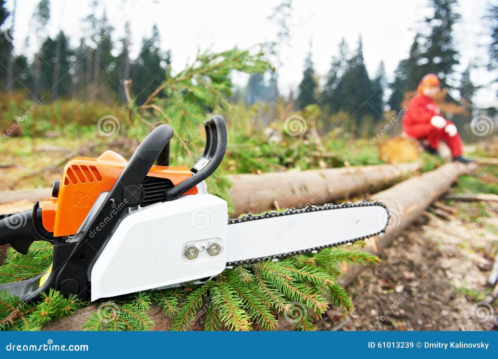 锯森林伐木工人工作者