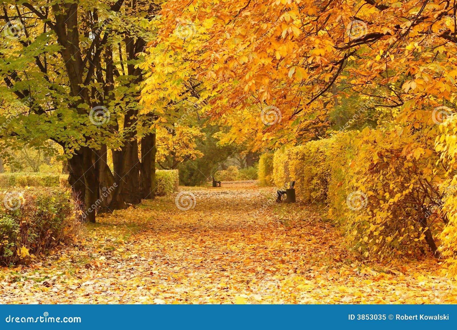 长凳公园路径