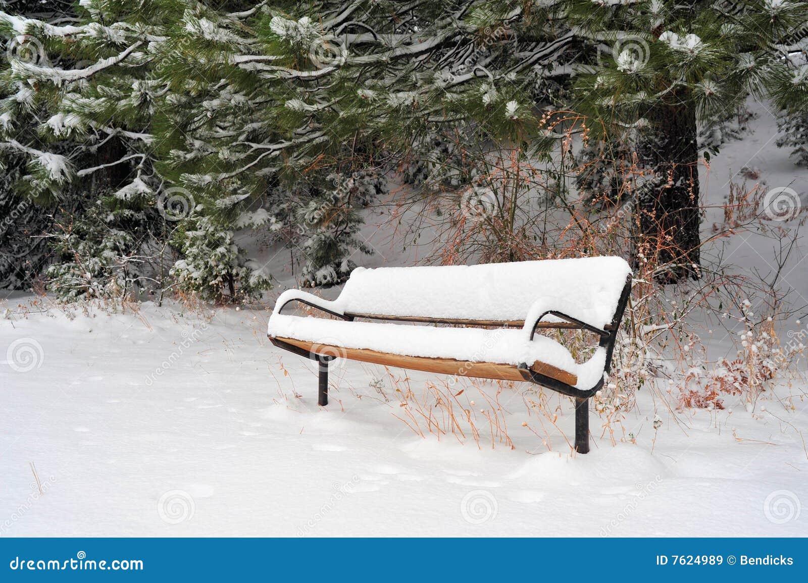 长凳包括雪