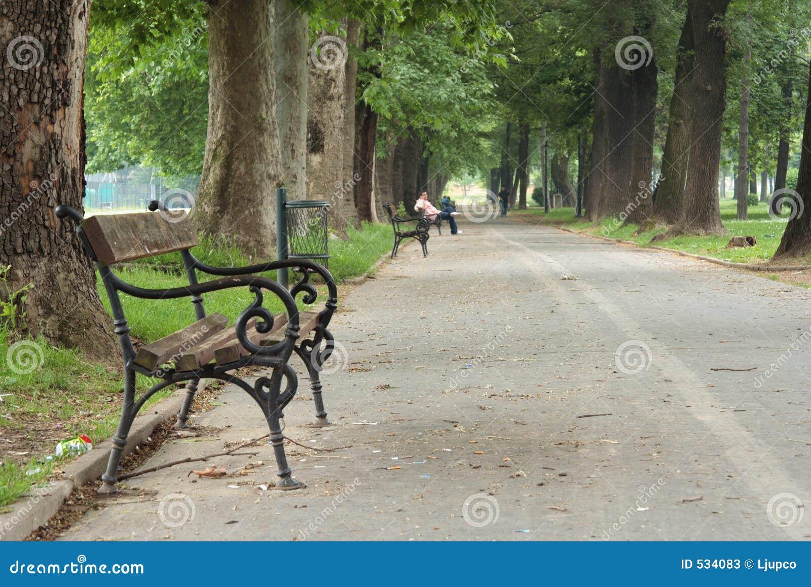 Download 长凳空的公园 库存图片. 图片 包括有 孤独, beautifuler, 废弃物, 叶子, 垃圾, 金属, 安静 - 534083