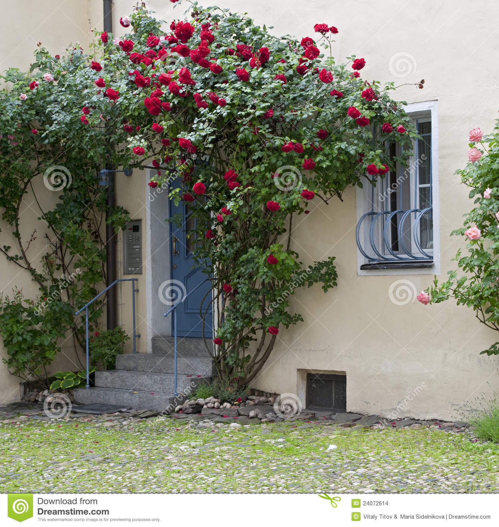 巴伐利亚门德国浪漫玫瑰包围围场.