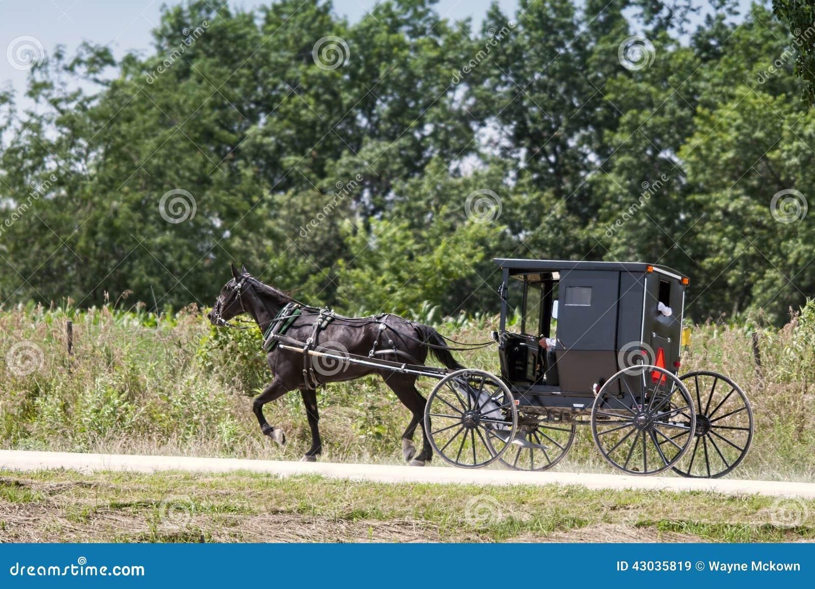 门诺派中的严紧派的马和黑儿童车
