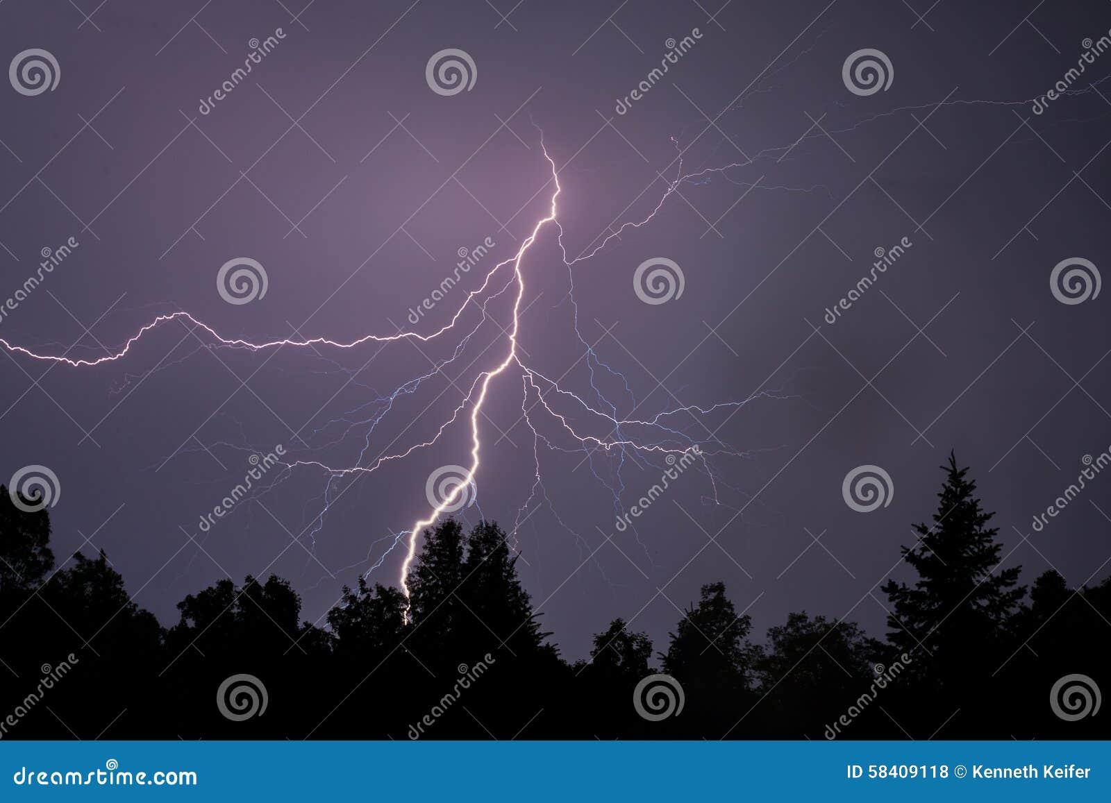 闪电现出轮廓树