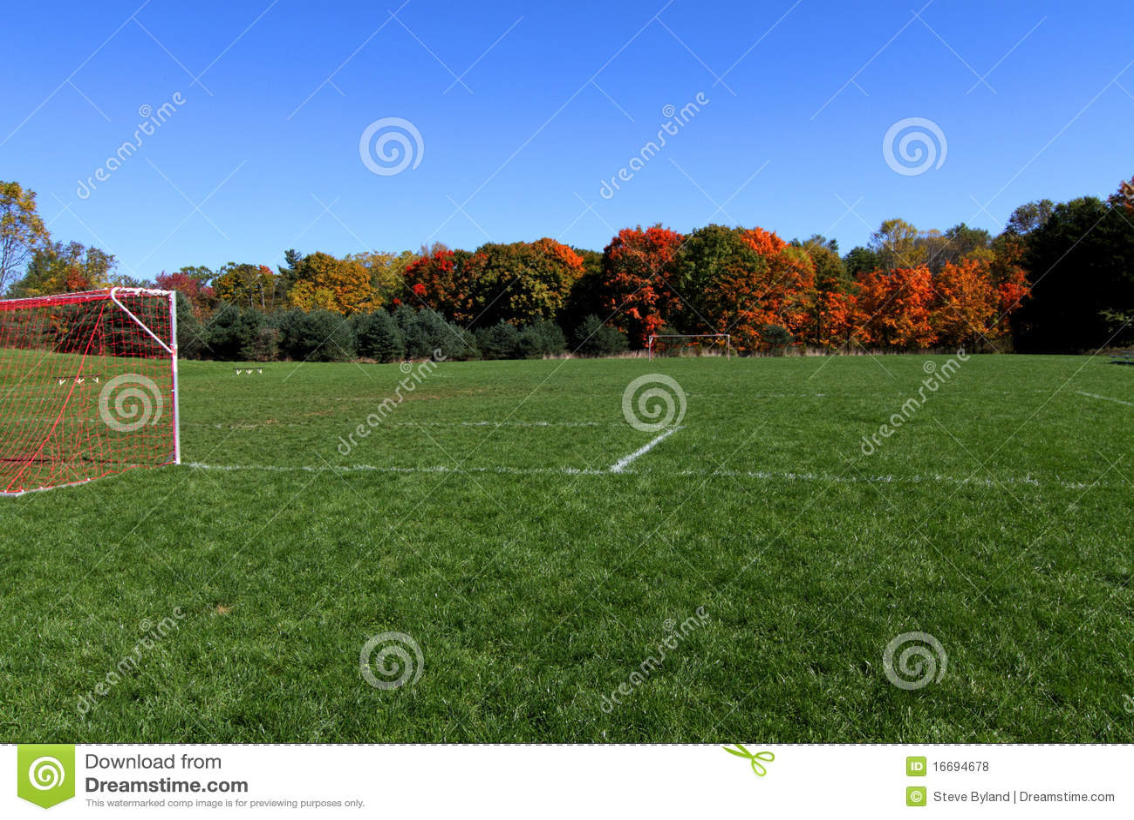 闲置域的足球