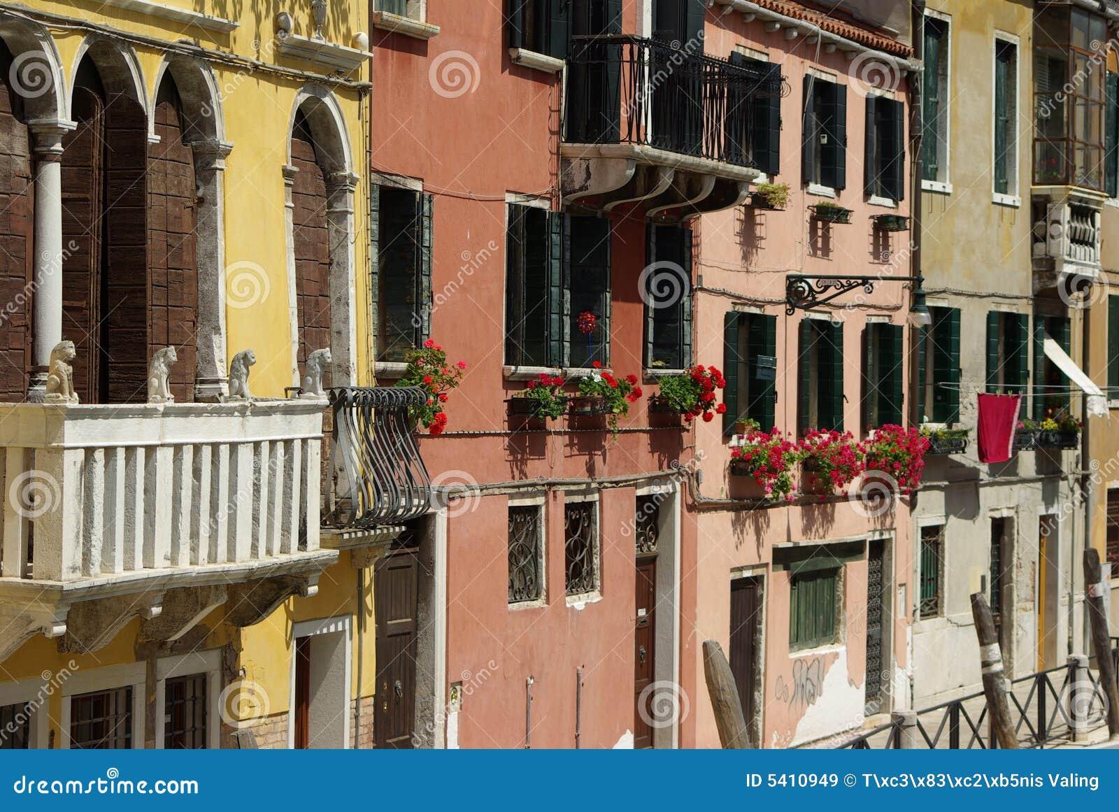 阳台开花意大利人