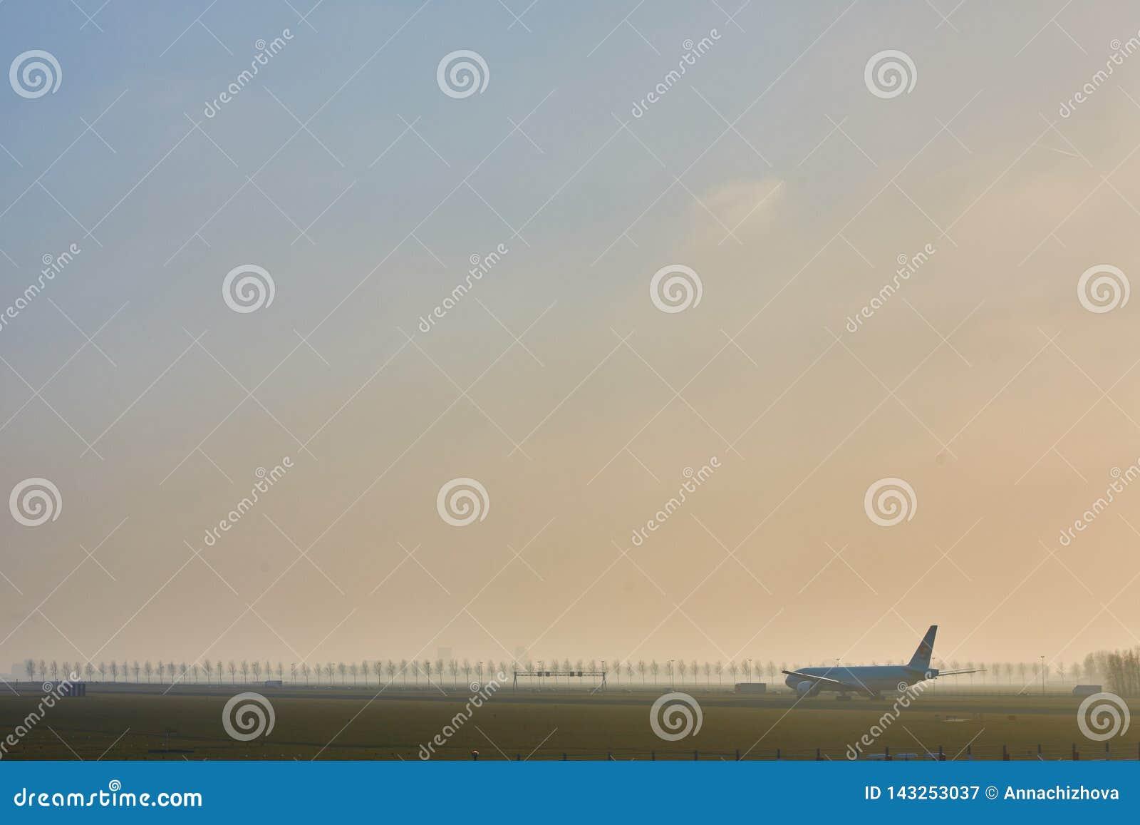 阿姆斯特丹,荷兰- 2016年3月11日:阿姆斯特丹史基浦机场在荷兰 AMS是主要的荷兰的