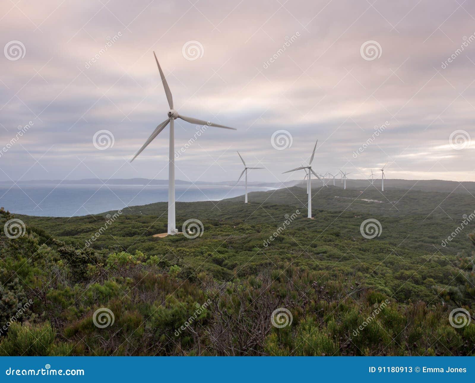 阿尔巴尼风力场,西澳州