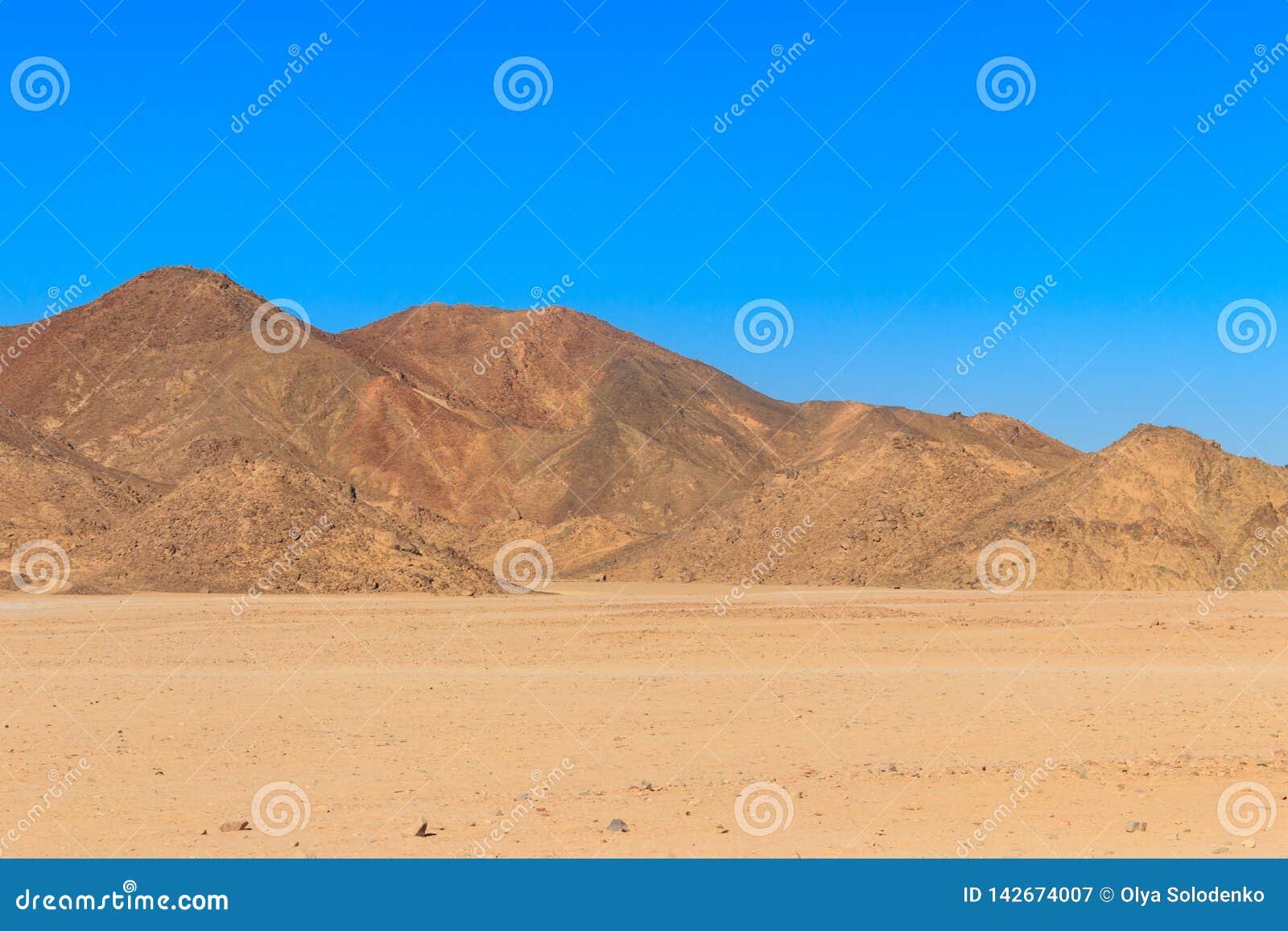 阿拉伯沙漠和山脉红海小山看法在埃及