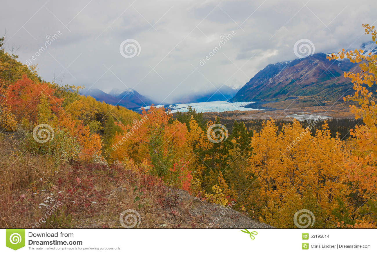 阿拉斯加的秋天