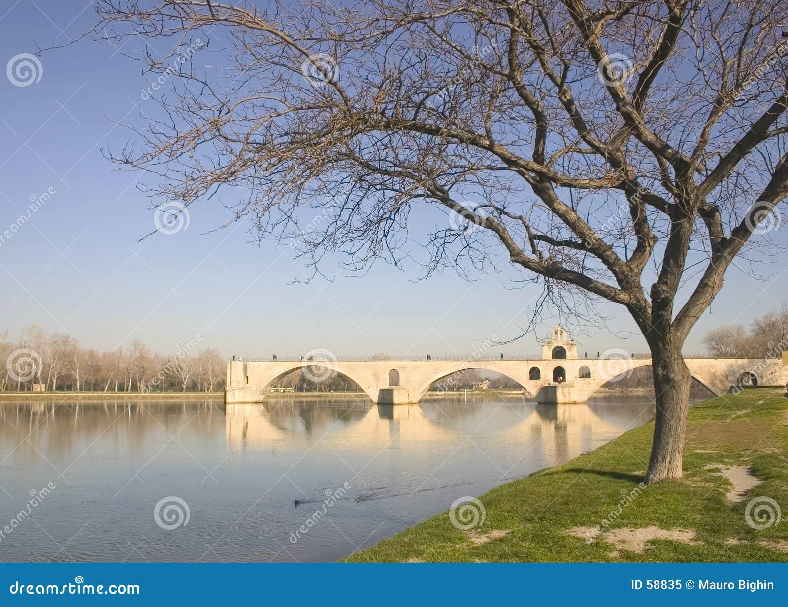 阿维尼翁桥梁欧洲法国冬天
