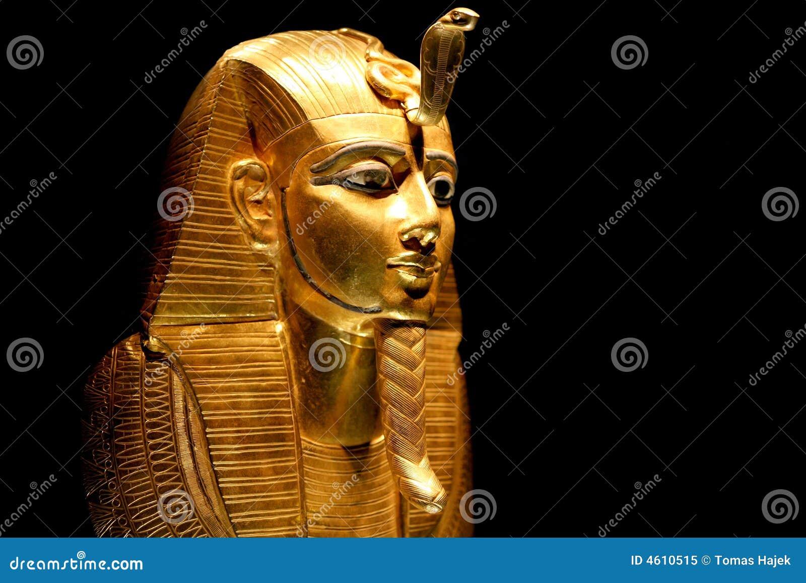 陈列tutankhamun