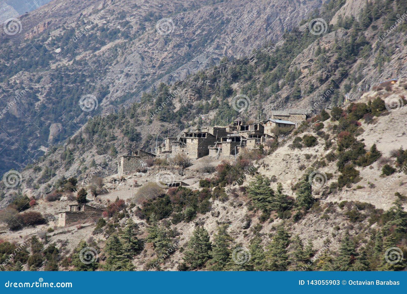 陡峭的小山的村庄在喜马拉雅山